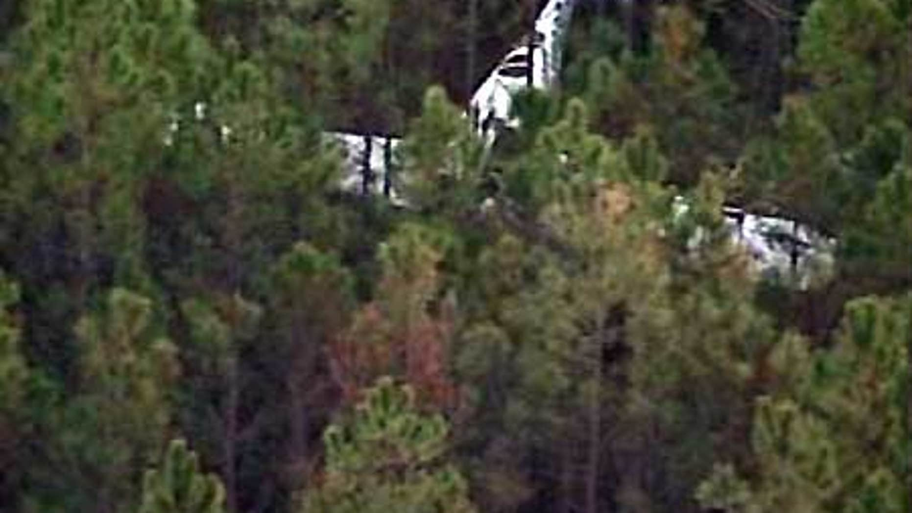 Feb. 18: This aerial image shows the site of a plane crash in Volusia County, Fla.