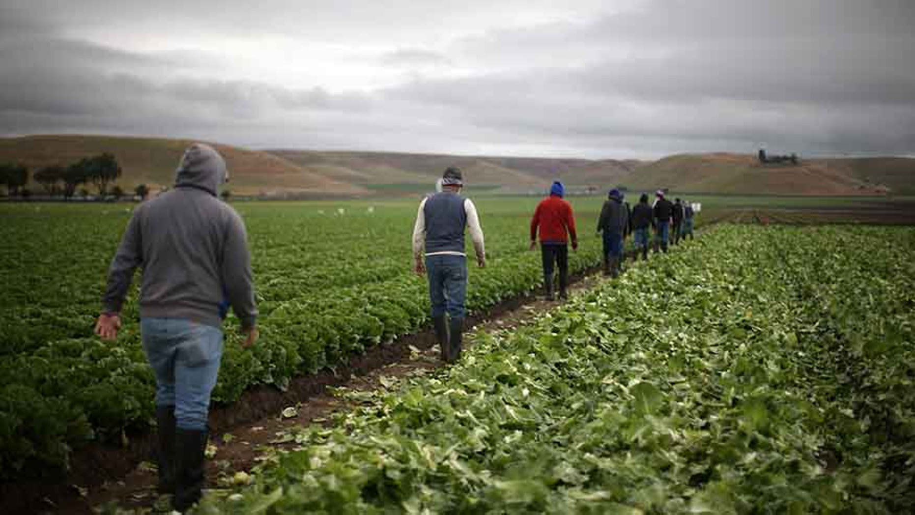 """The prospects of a looming trade war between the U.S. and China has already hurt many farmers.  The Washington Post reported that earlier this month, """"in the hours after China floated a levy on soybeans, futures prices dropped 4 percent, or 40 cents, to $9.97 a bushel, approaching the break-even point on many farms."""""""