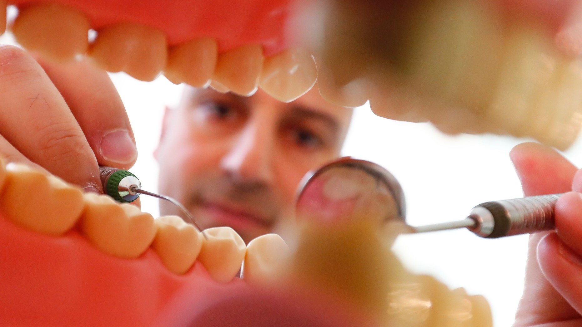 Dentist Sevan Arzuyan poses for an illustration picture with a teeth model at his surgery room in Hanau near Frankfurt, Germany, March 7, 2016.    REUTERS/Kai Pfaffenbach  - RTSB1YZ