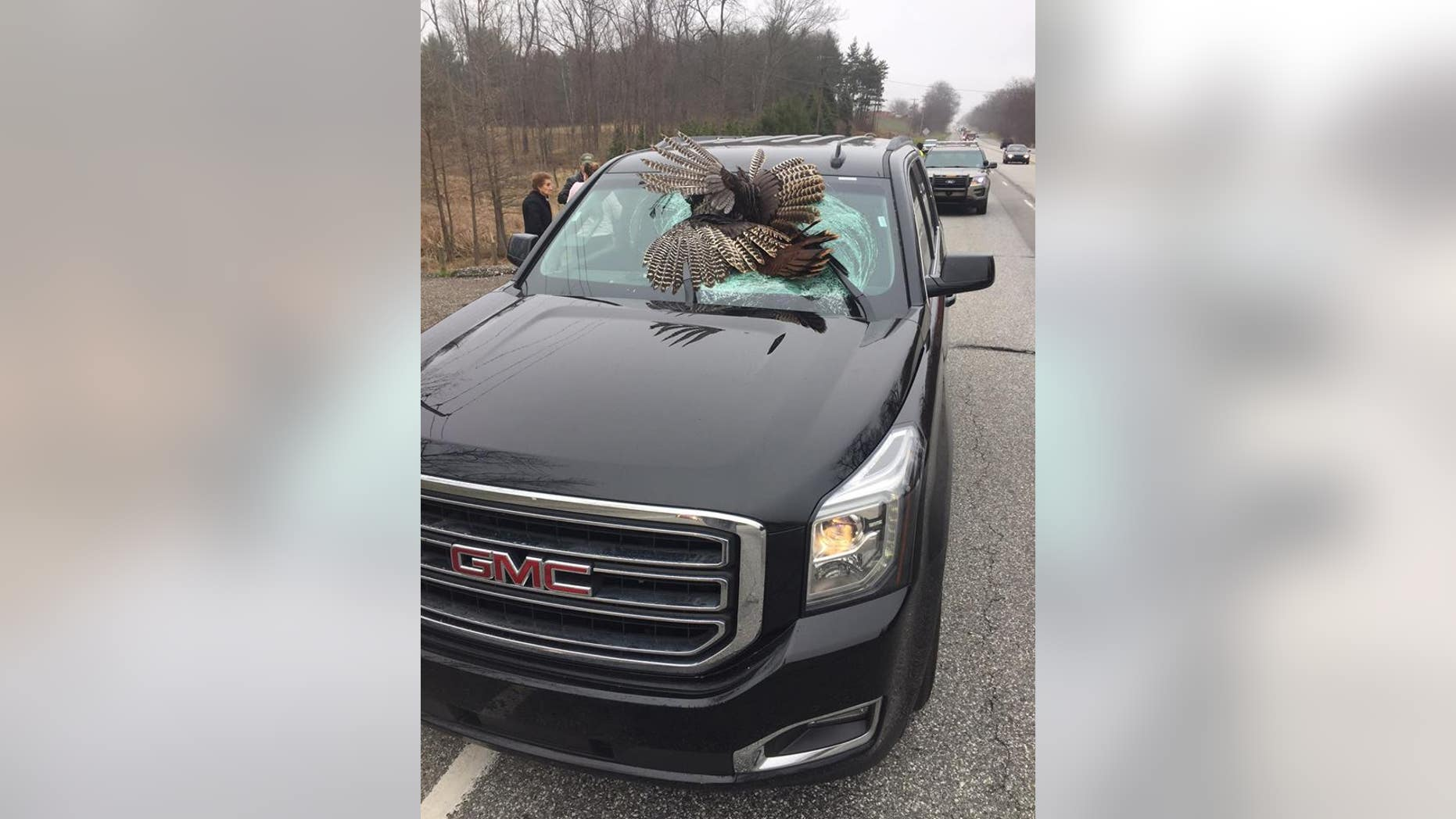 Wild turkey crashes through family's windshield in northern Indiana.