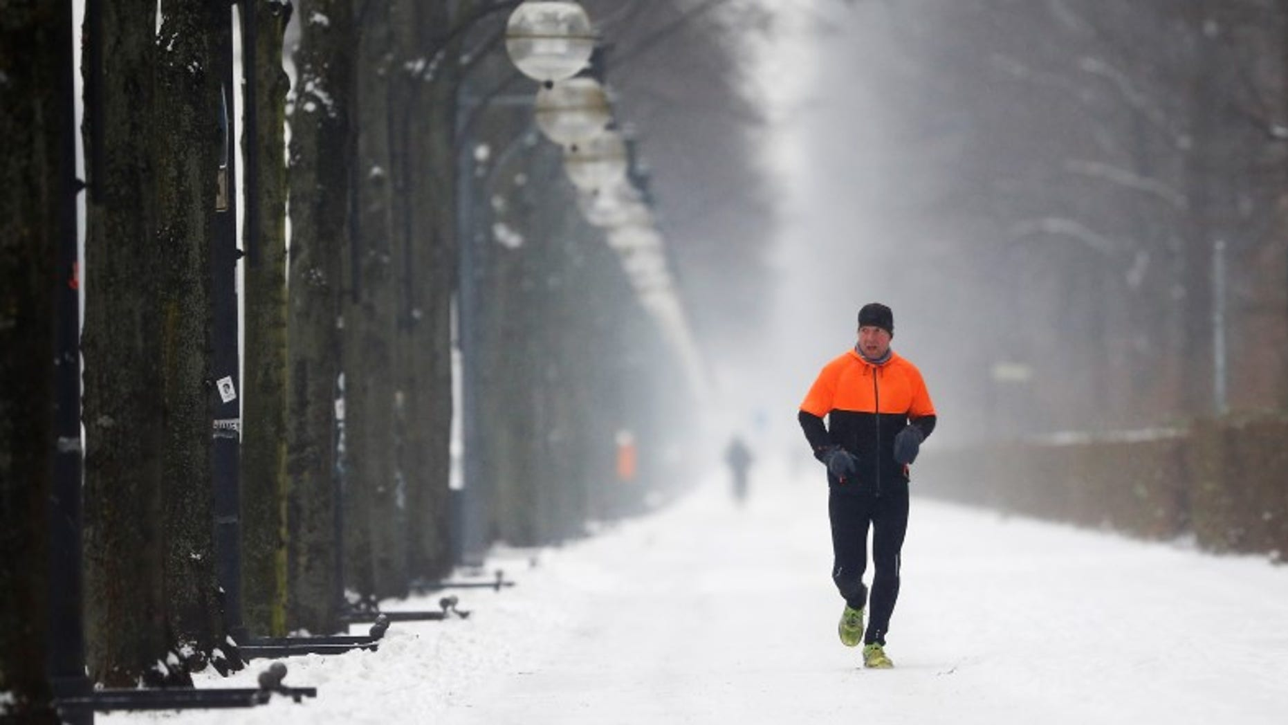 A jogger runs along a snow covered path in Berlin, Germany, January 6, 2016.   REUTERS/Hannibal Hanschke