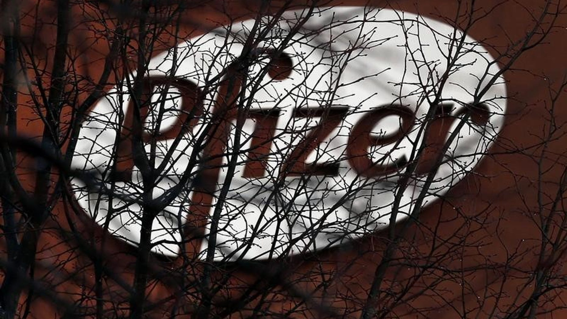 A company logo is seen through branches at a Pfizer office in Dublin, Ireland November 24, 2015.   REUTERS/Cathal McNaughton