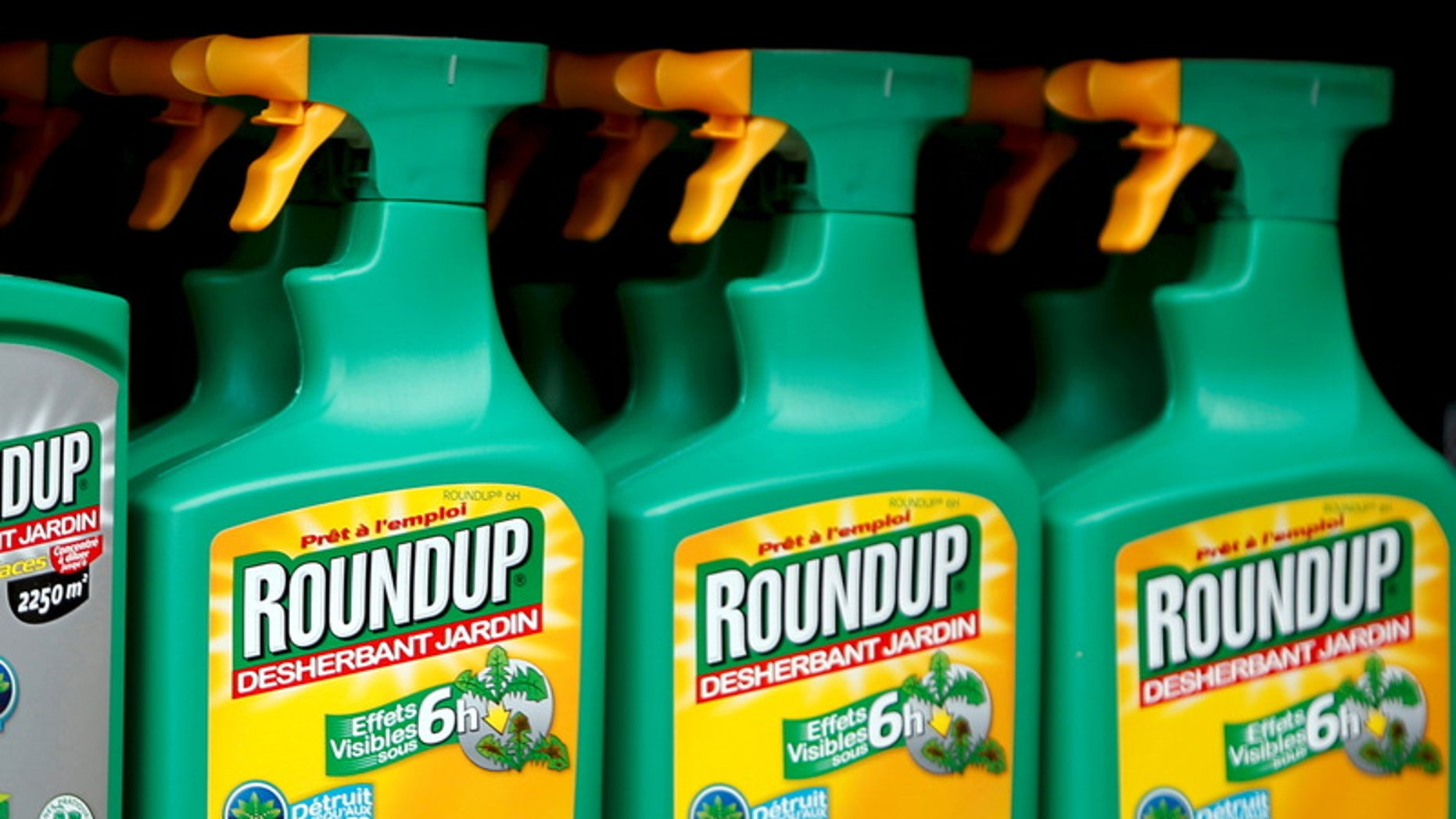 File photo of Monsanto's Roundup weedkiller atomizers seen on sale at a garden shop at Bonneuil-Sur-Marne near Paris