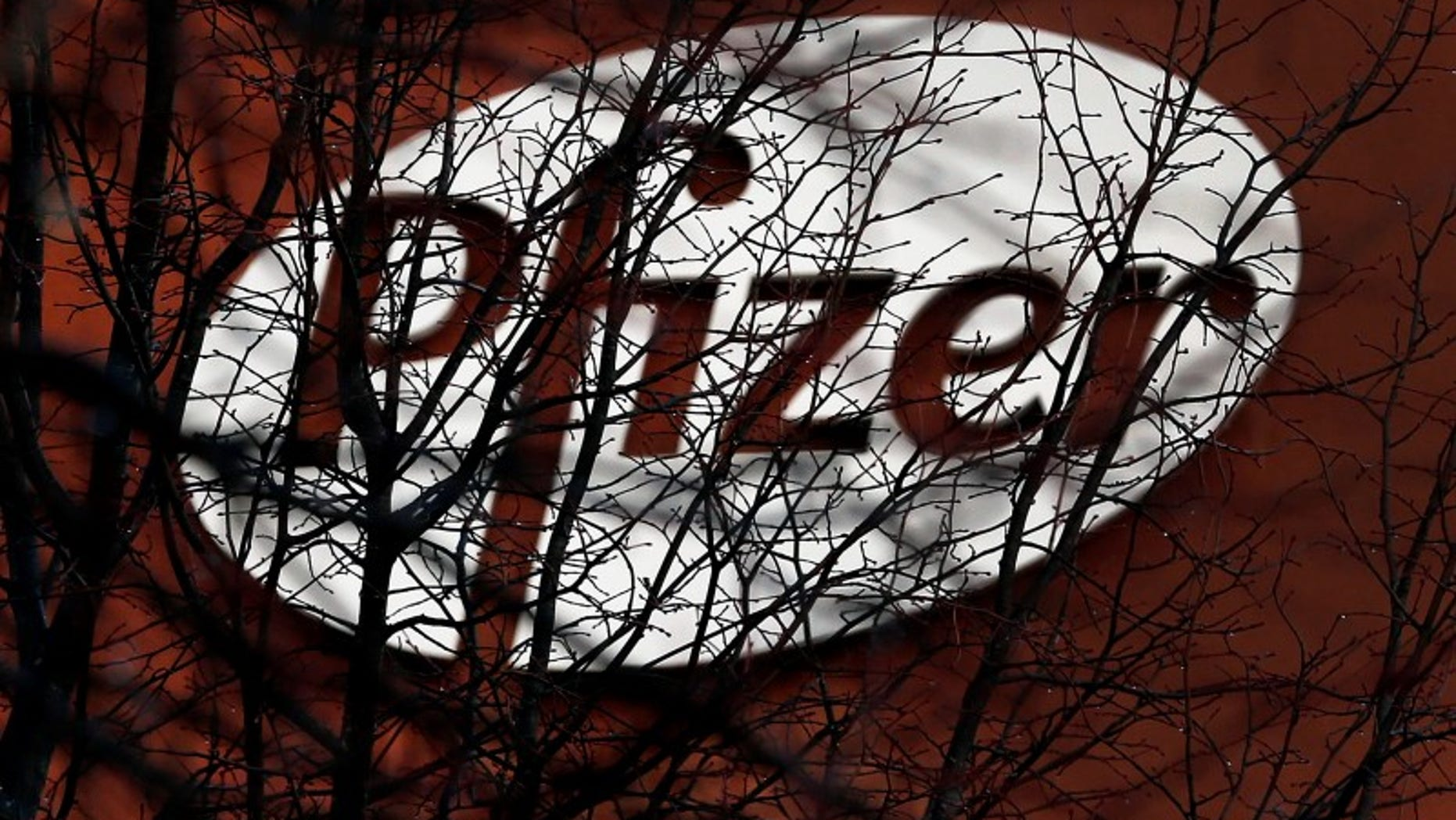 A company logo is seen through branches at a Pfizer office in Dublin