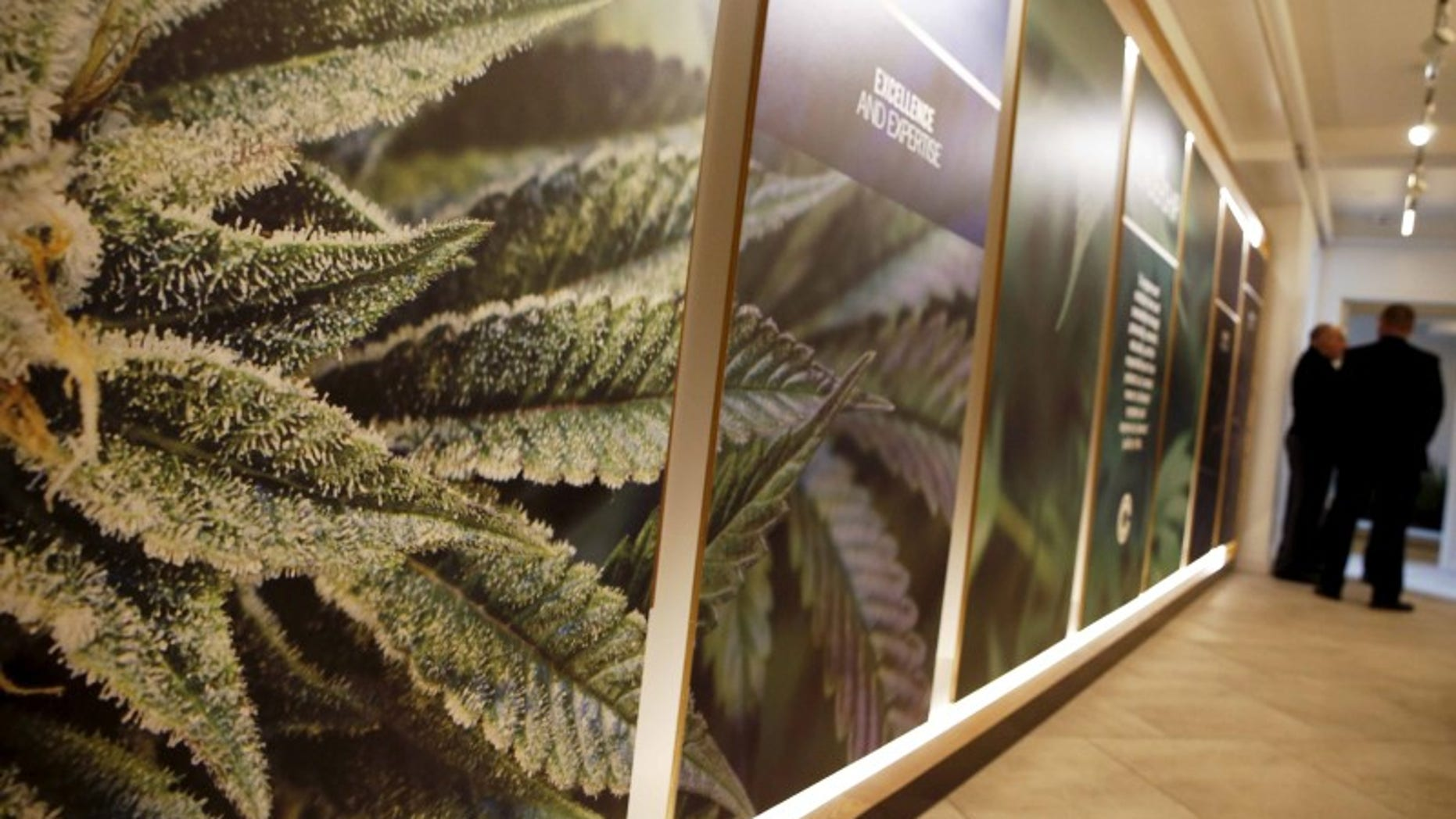 The inside of the Columbia Care medical marijuana dispensary is seen in New York.