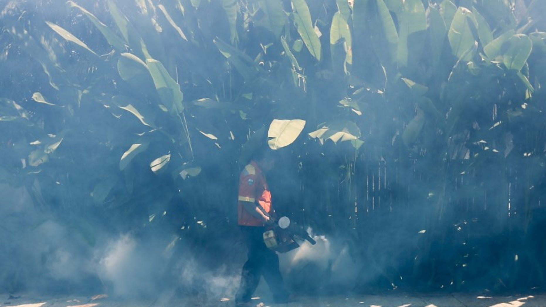A worker fumigates the area to control the spread of mosquitoes in Bangkok