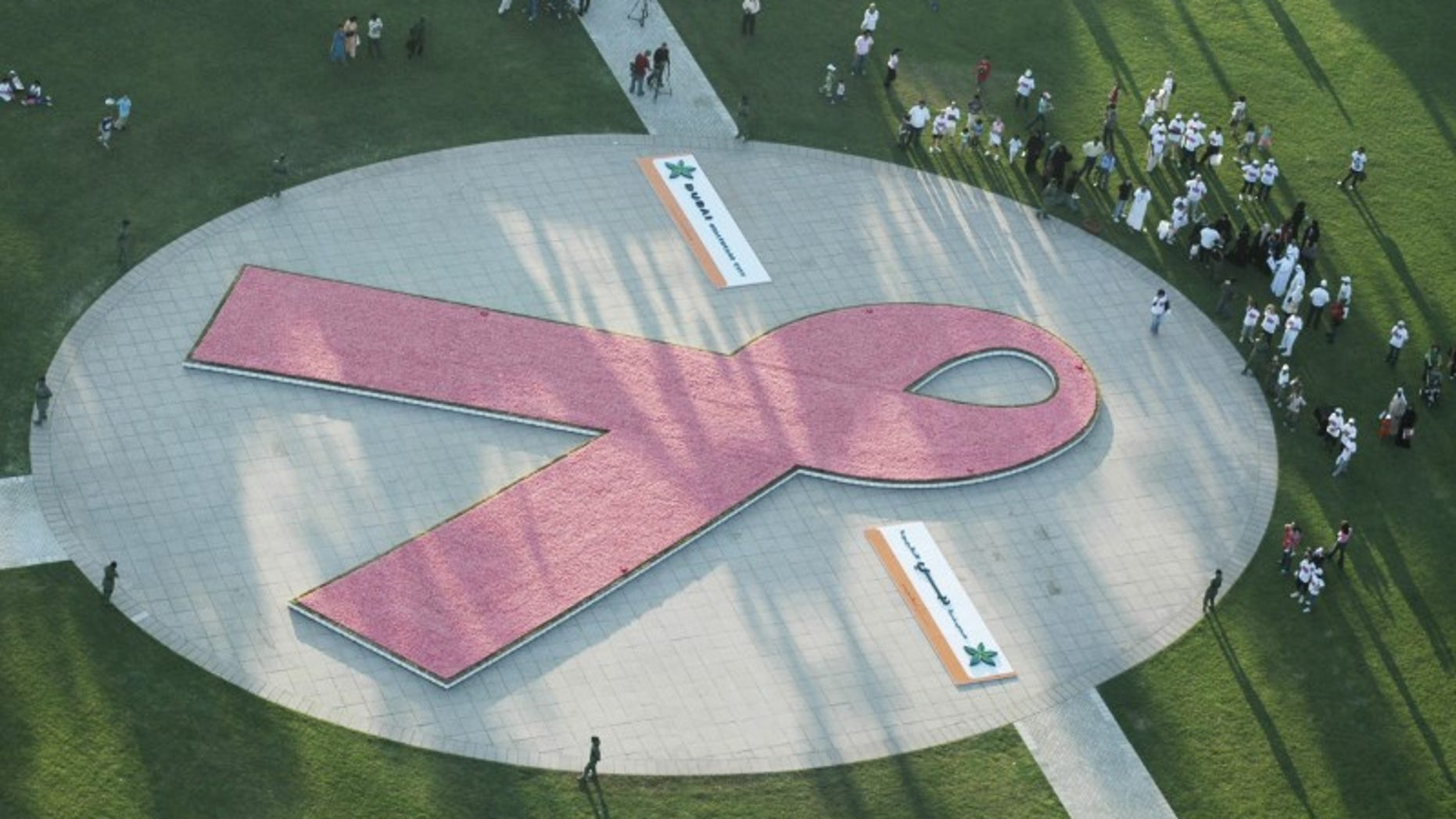 The world's largest awareness ribbon made of flowers is seen from above during the UAE leg of the Avon Walk around the world for Breast Cancer Awareness walkathon in Zaabeel park in Dubai
