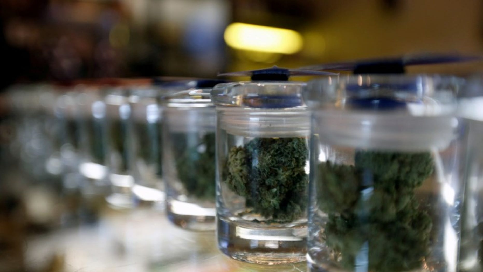 FILE PHOTO - A variety of medicinal marijuana buds in jars are pictured at Los Angeles Patients & Caregivers Group dispensary in West Hollywood