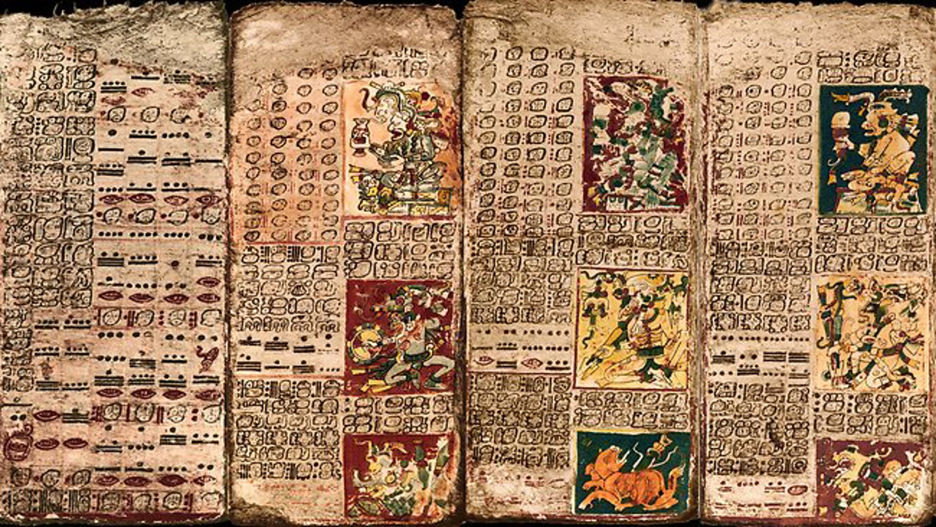 Pages from the Dresden Codex, one of only four Maya books known to have survived the Conquest.