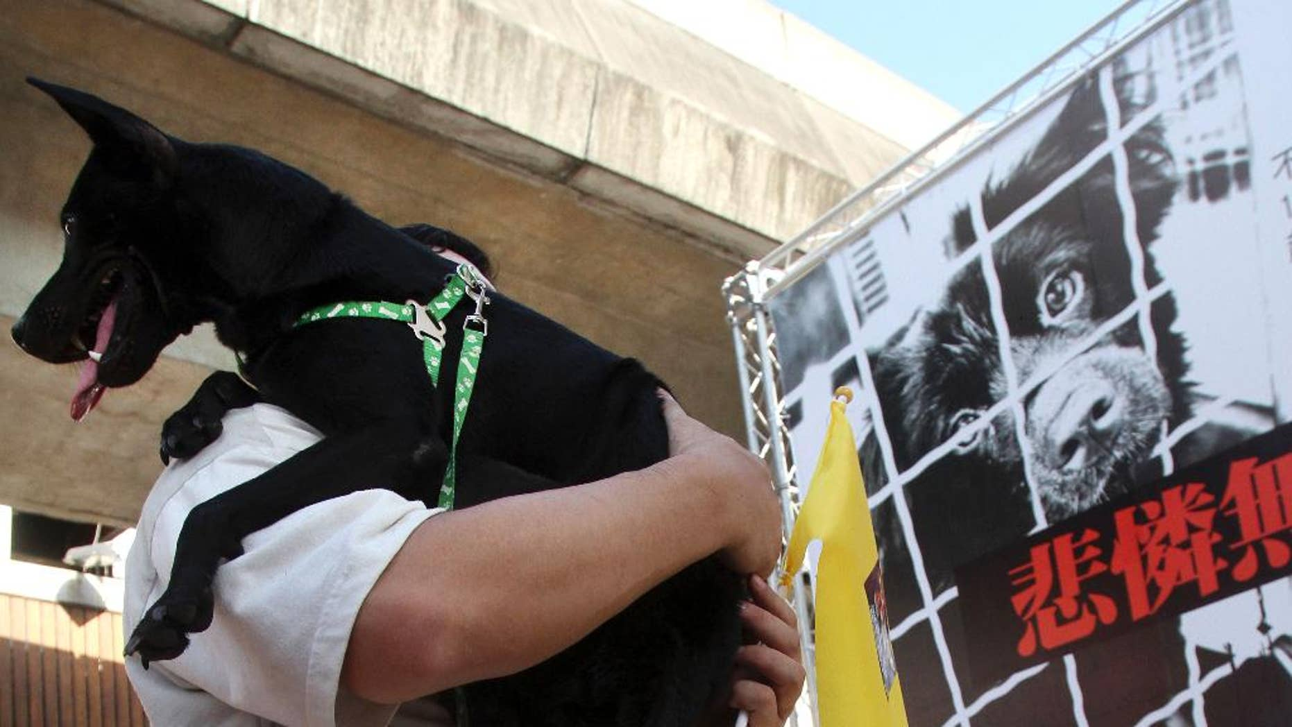 A Taiwanese man holds his dog during a protest of animal abuse in Taipei, in 2011.
