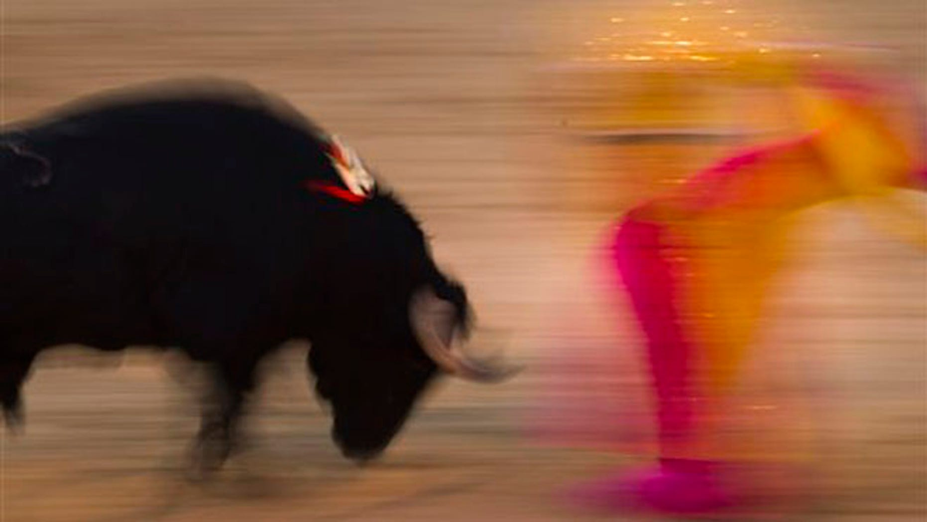 File - In this Aug. 15, 2010 file photo, Spanish bullfighter Victor Puerto performs during a bullfight at the Las Ventas Bullring in Madrid. Spain's state TV will start airing live bullfights again on Sept. 5, 2012 after the new conservative government lifted a six-year ban on the tradition that has been hard hit by declining popularity and the economic crisis. It's a big victory for pro-bullfighting forces who saw fights prohibited this year in the northeastern region of Catalonia. And it's a defeat for animal rights activists who denounce bullfighting as barbaric. The live transmissions were halted in 2006 by Spain's previous Socialist administration, which said they were costly and coincided with youth TV viewing hours. (AP Photo/Daniel Ochoa de Olza, File)