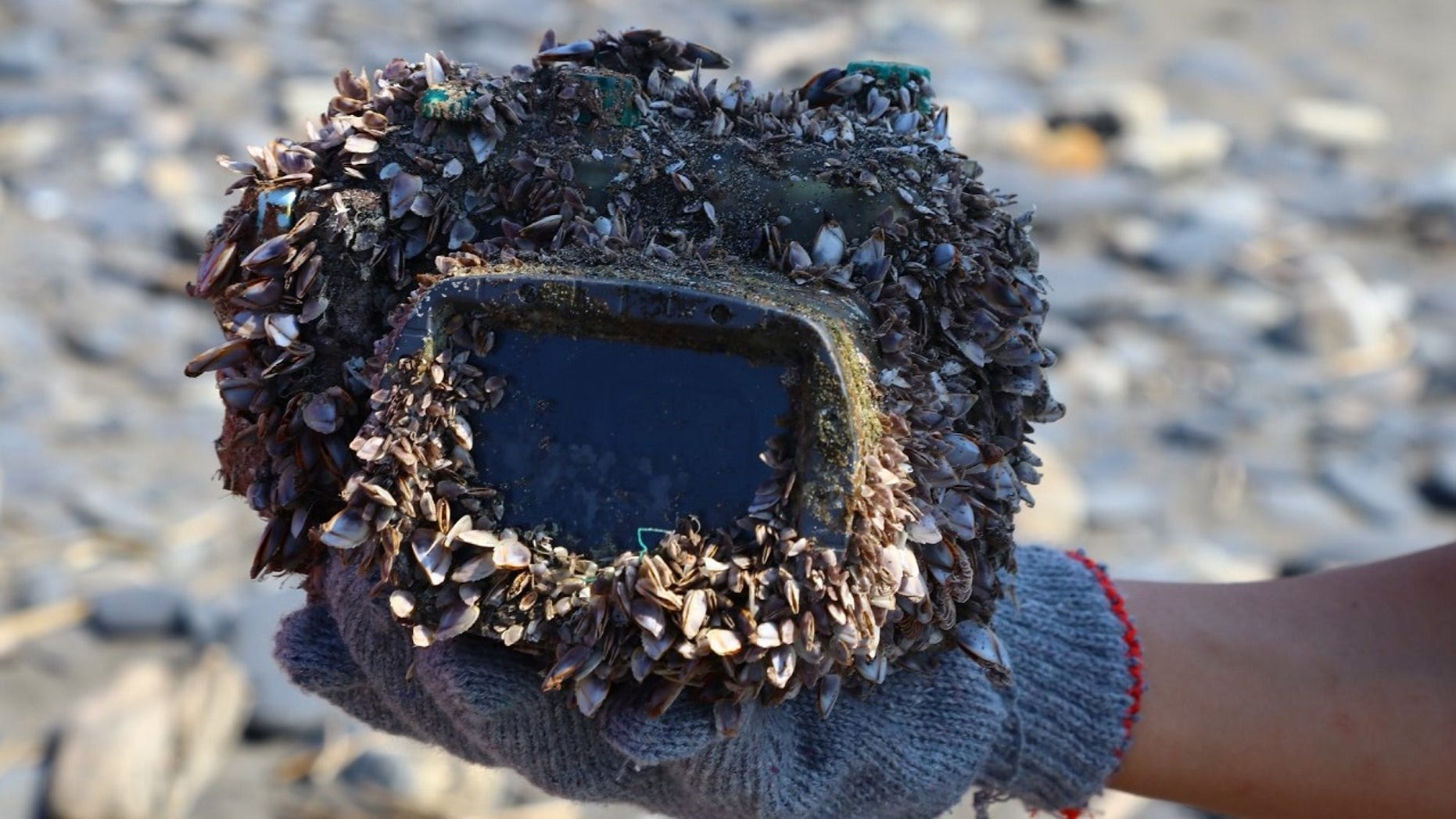 The camera was returned to its owner more than two years after it was dropped in the ocean.