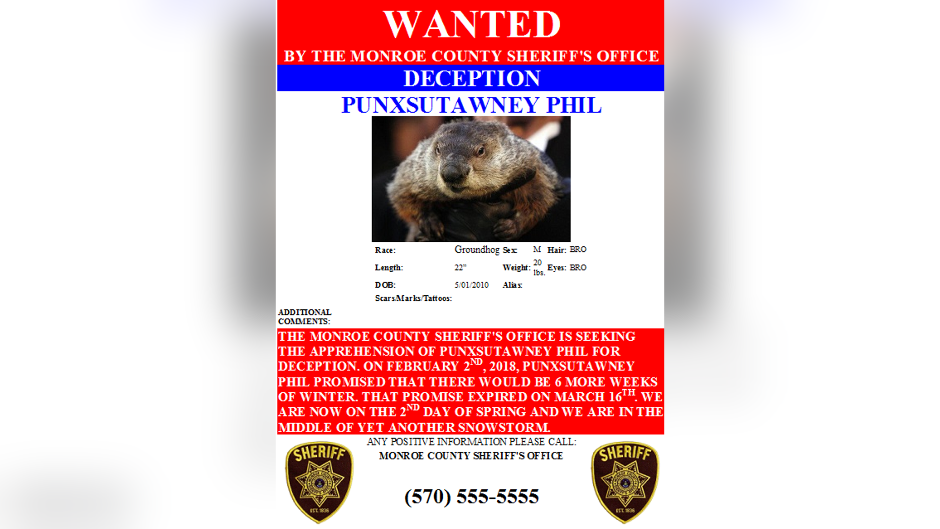 "Monroe County Sheriff's Office places a  ""warrant"" is out for Punxsutawney Phil's arrest."