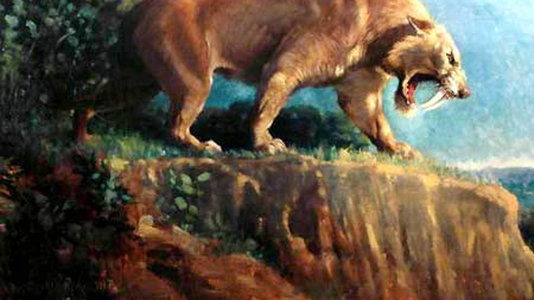 'Smilodon,' a 1905 painting by Charles R. Knight depicting a saber-tooth cat.