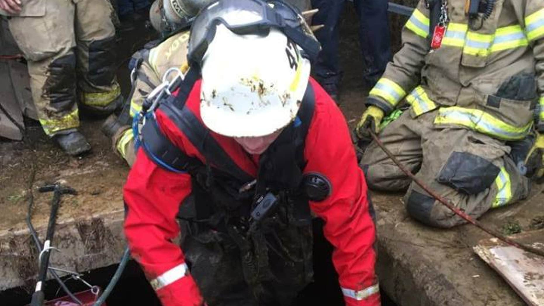 A Pennsylvania boy was rescued after falling into a manure pit.