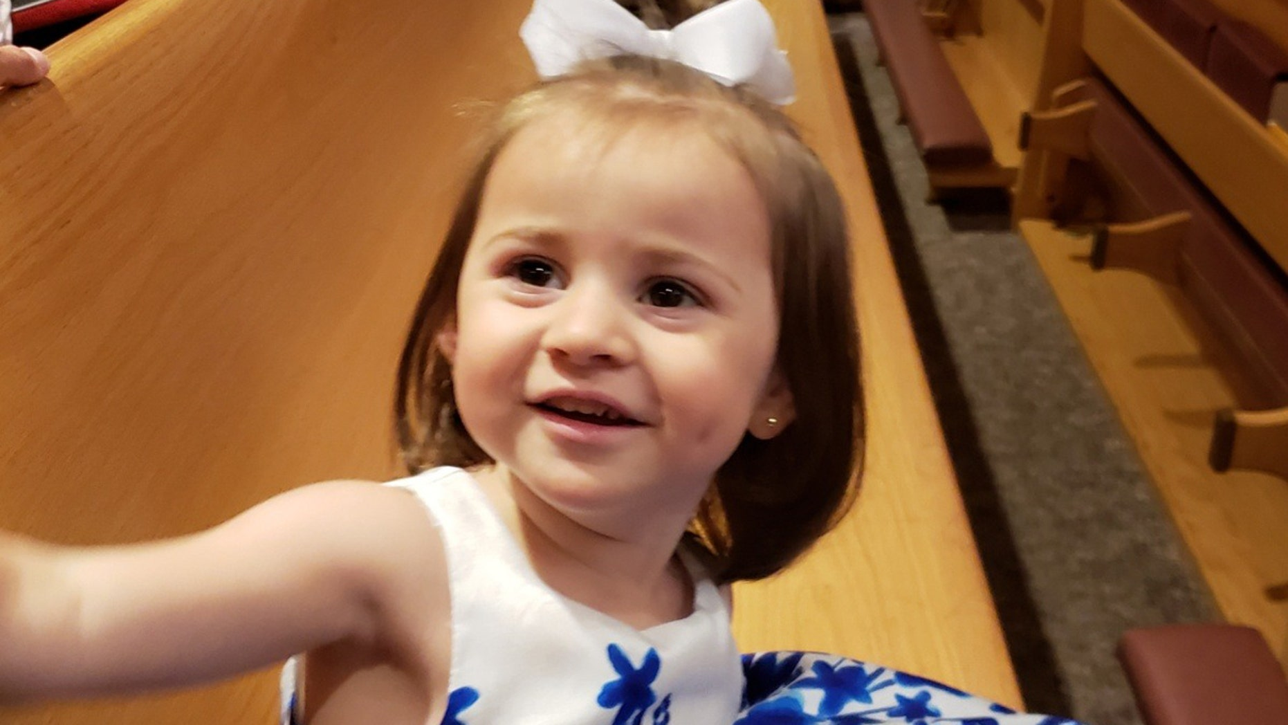 Felicity Karam, 2, died after an ice cream truck hit her on Sunday afternoon.