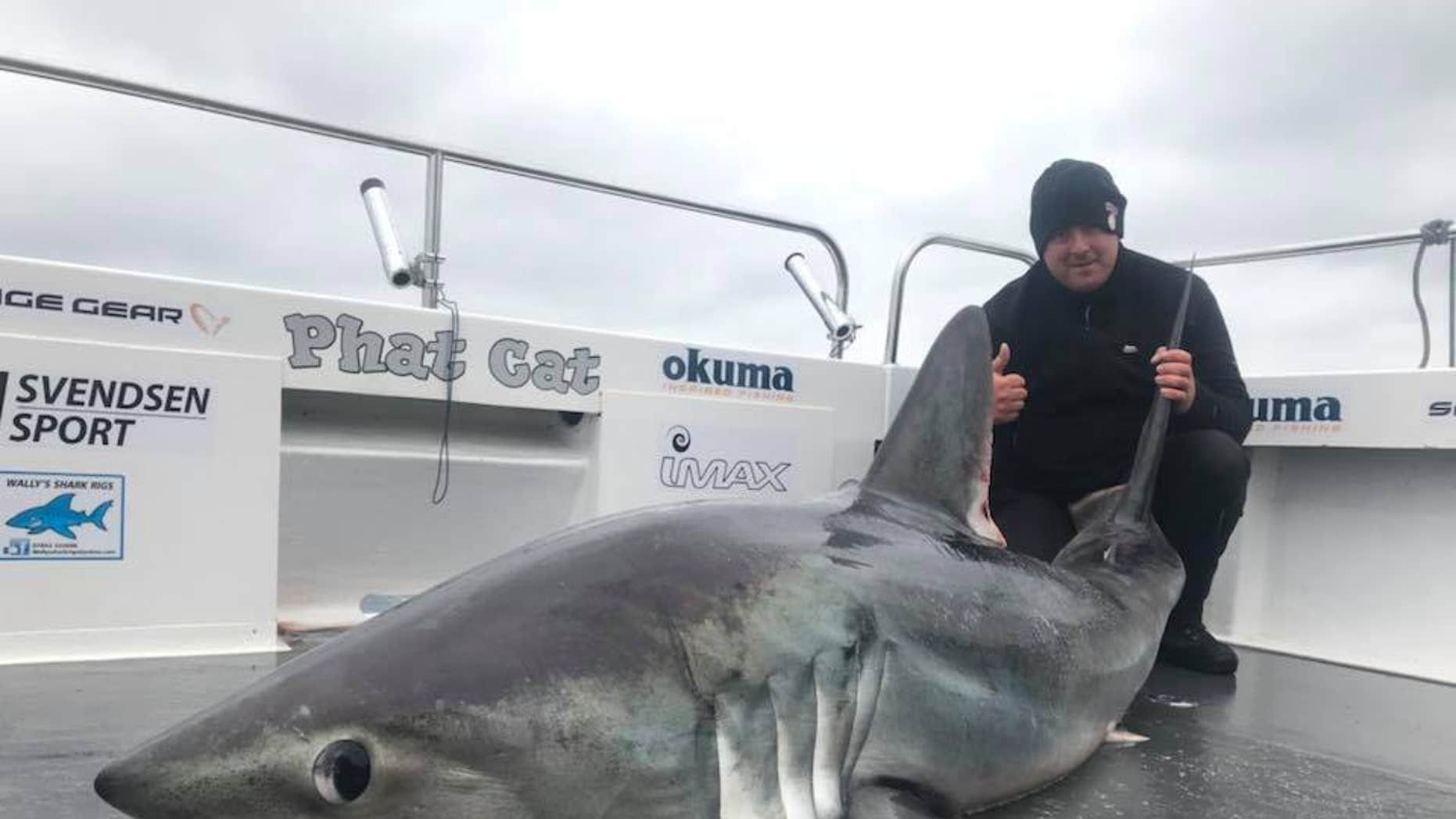Tourist Matthew Burrett reeled in the 324-pound shark during a recent trip with Phatcat Charters off the coast of Wales.
