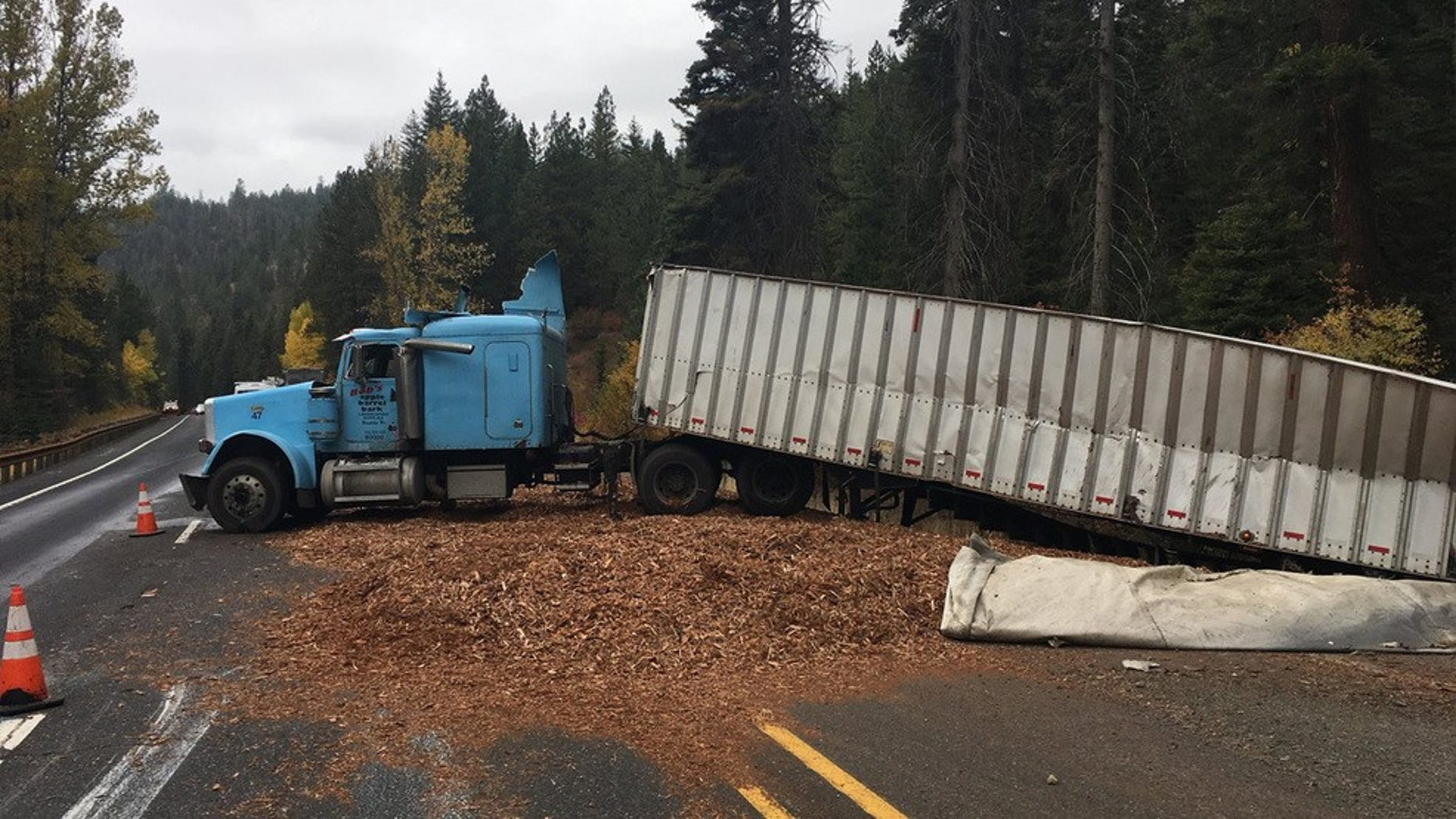 A truck driver in Washington rolled off the road Wednesday after he was distracted by the taco he was eating.