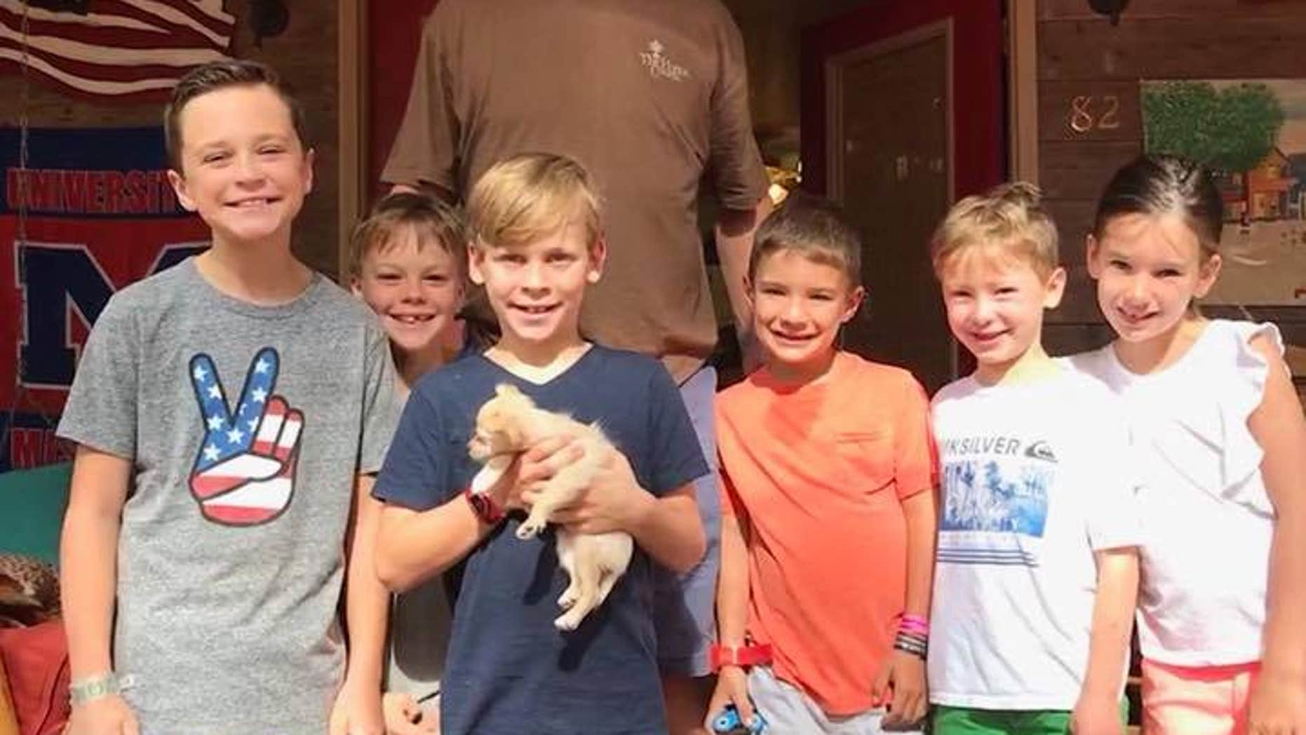 An abused puppy in Mississippi will be leading a better life after she was adopted by retired NFL quarterback Peyton Manning.