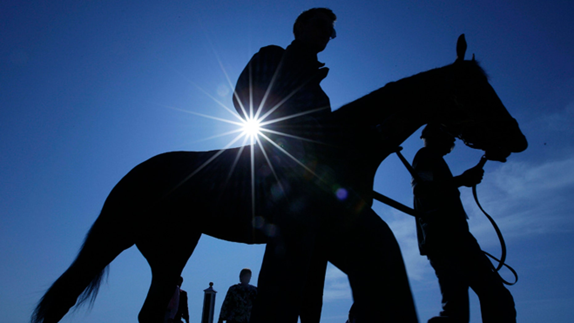 An exercise rider and horse are lead off the track after a morning workout at Pimlico Race Course, Friday, May 18, 2012, in Baltimore. The Preakness Stakes horse race takes place Saturday at Pimlico.(AP Photo/Matt Slocum)