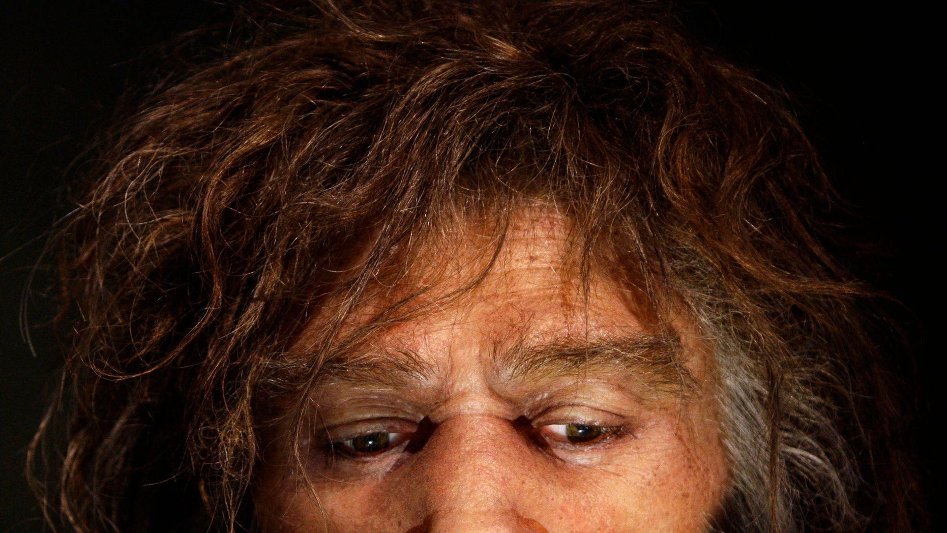 File photo: Hyperrealistic face of a neanderthal male is displayed in a cave in the new Neanderthal Museum in the northern Croatian town of Krapina February 25, 2010. (REUTERS/Nikola Solic)