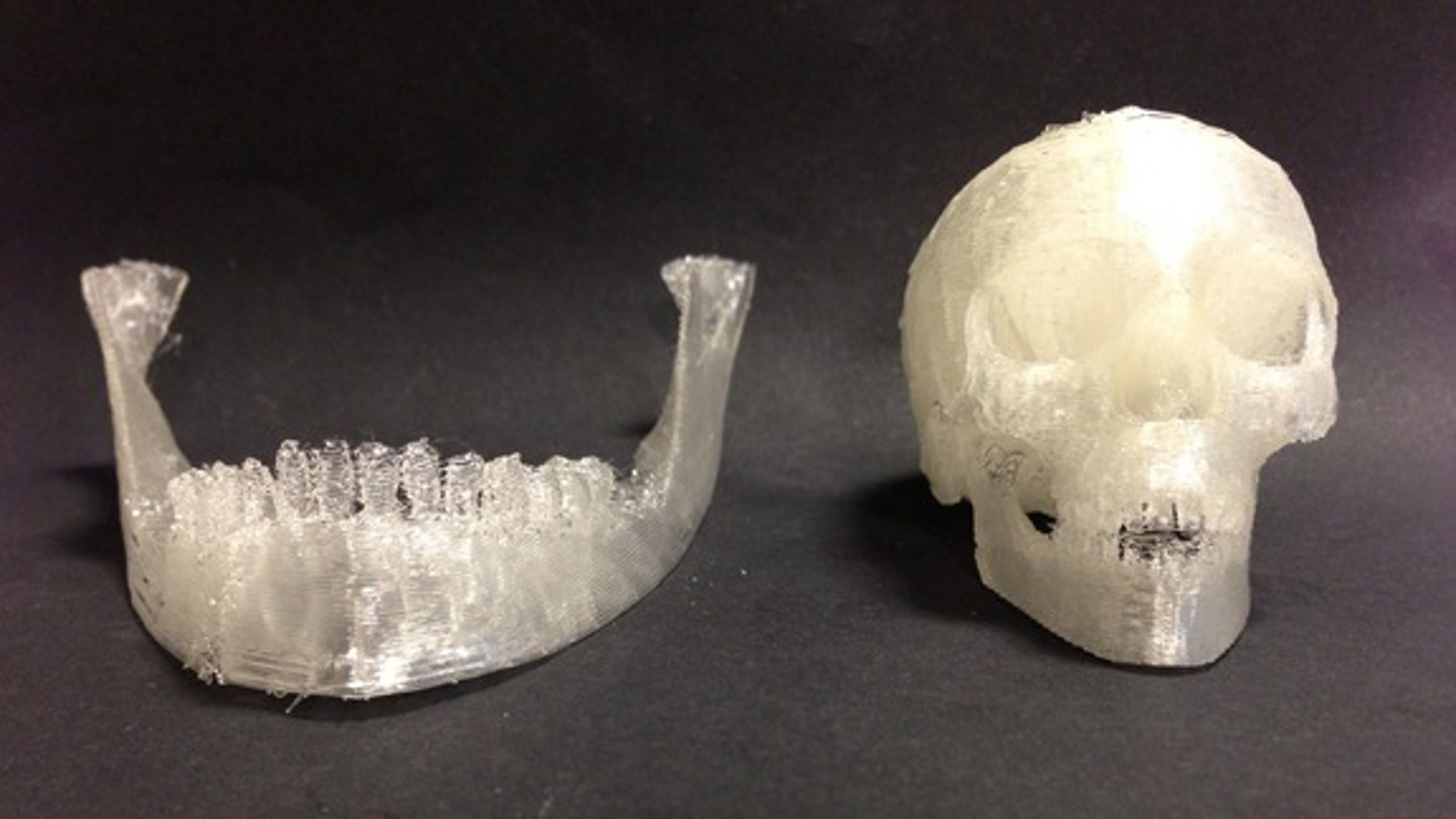 Using 3D printing, researchers can create scaffolds to repair/replace bone tissue. Shown here: a 3D printed skull.