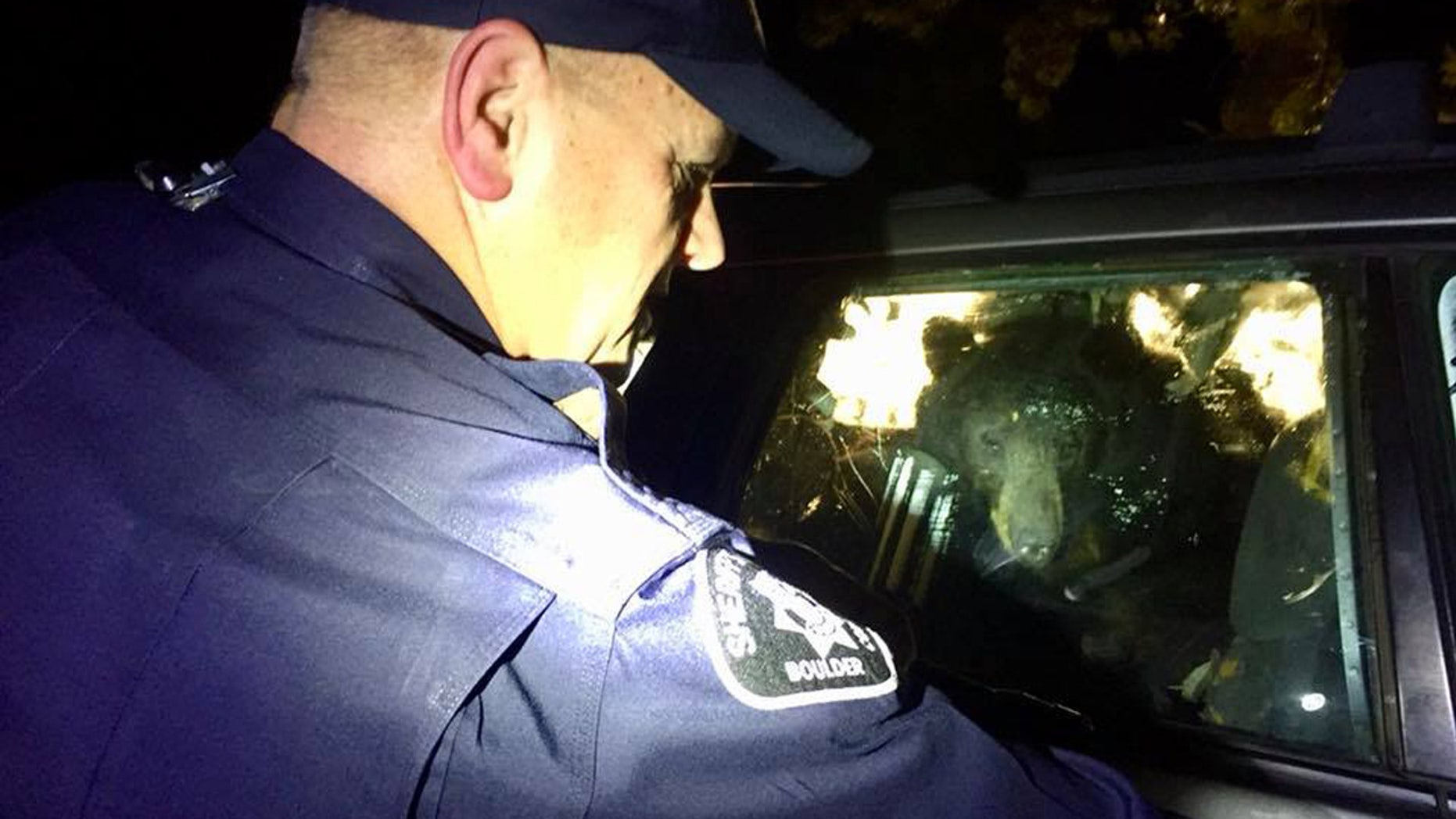 The Boulder County Sheriff's Office had to free a bear from a car on Monday after it got locked inside.