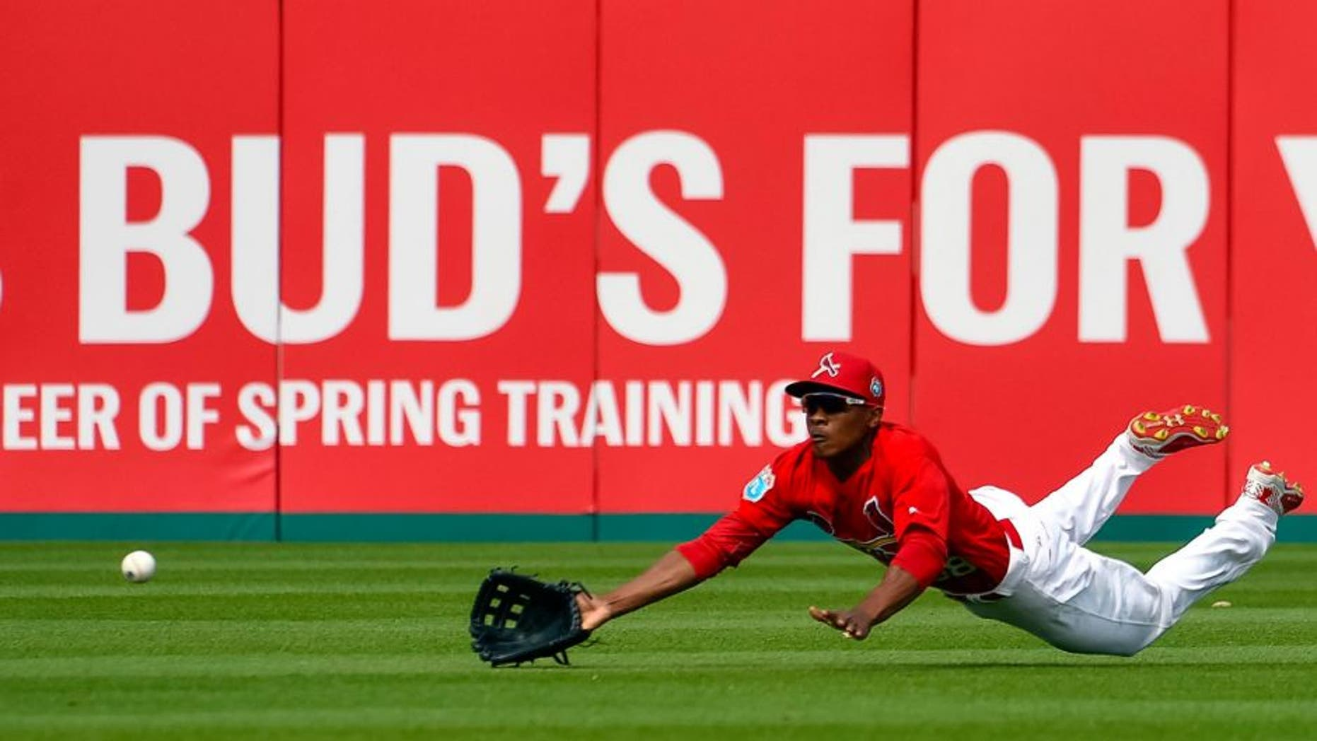 Mar 21, 2016; Jupiter, FL, USA; St. Louis Cardinals center fielder Magneuris Sierra (98) makes a diving attempt against the Boston Red Sox during the game at Roger Dean Stadium. The Red Sox defeated the Cardinals 4-3. Mandatory Credit: Scott Rovak-USA TODAY Sports