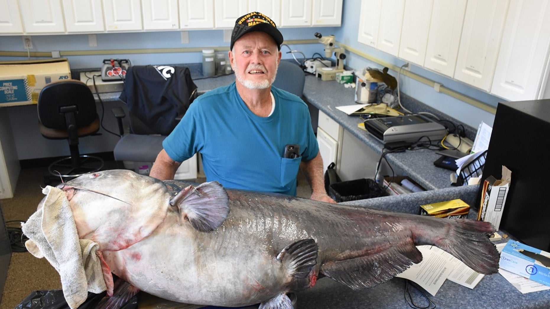 The blue catfish weighed in at 120 pounds, the FWC said.