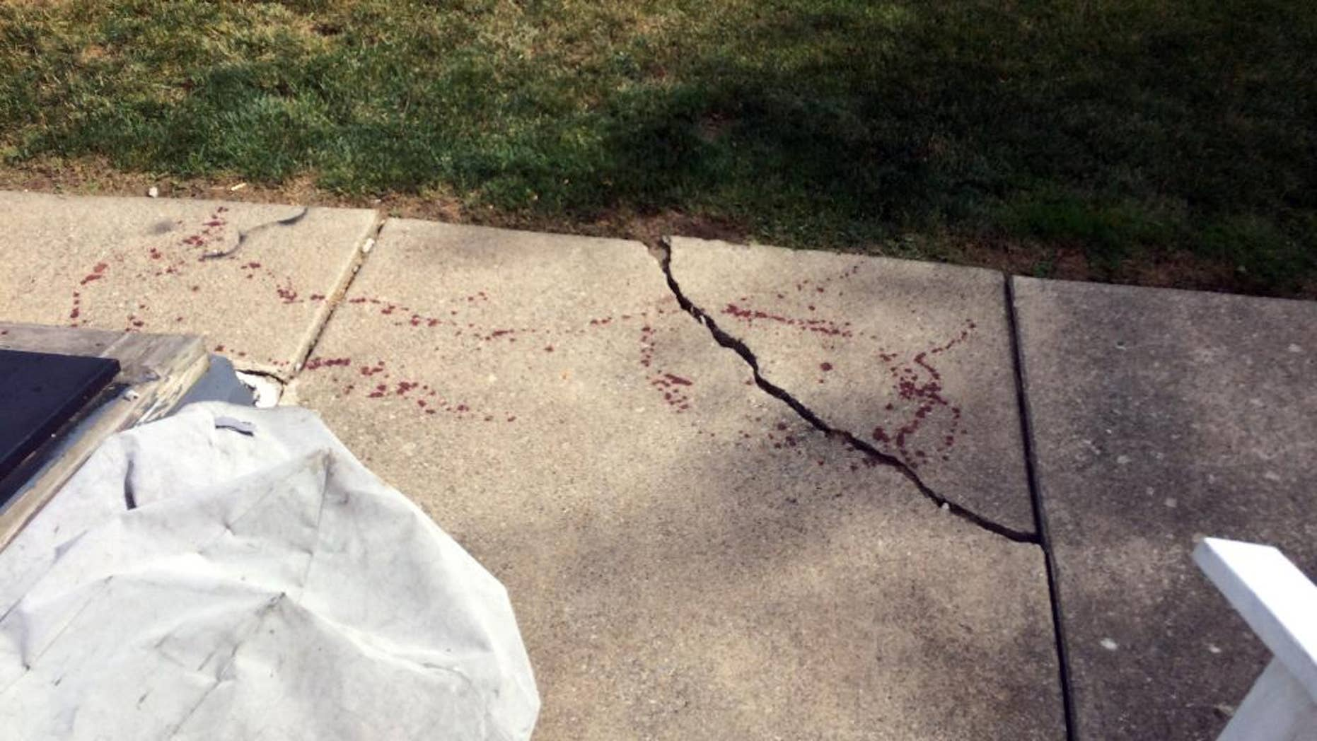 In this Sunday, July 3, 2016 photo, drops of blood are seen near a basement door, left, in Northampton, Pa. Officials in eastern Pennsylvania said a man who said he was attacked by masked men during a home invasion cut off the hand of one of them with a machete. (Pamela Lehman/The Morning Call via AP)