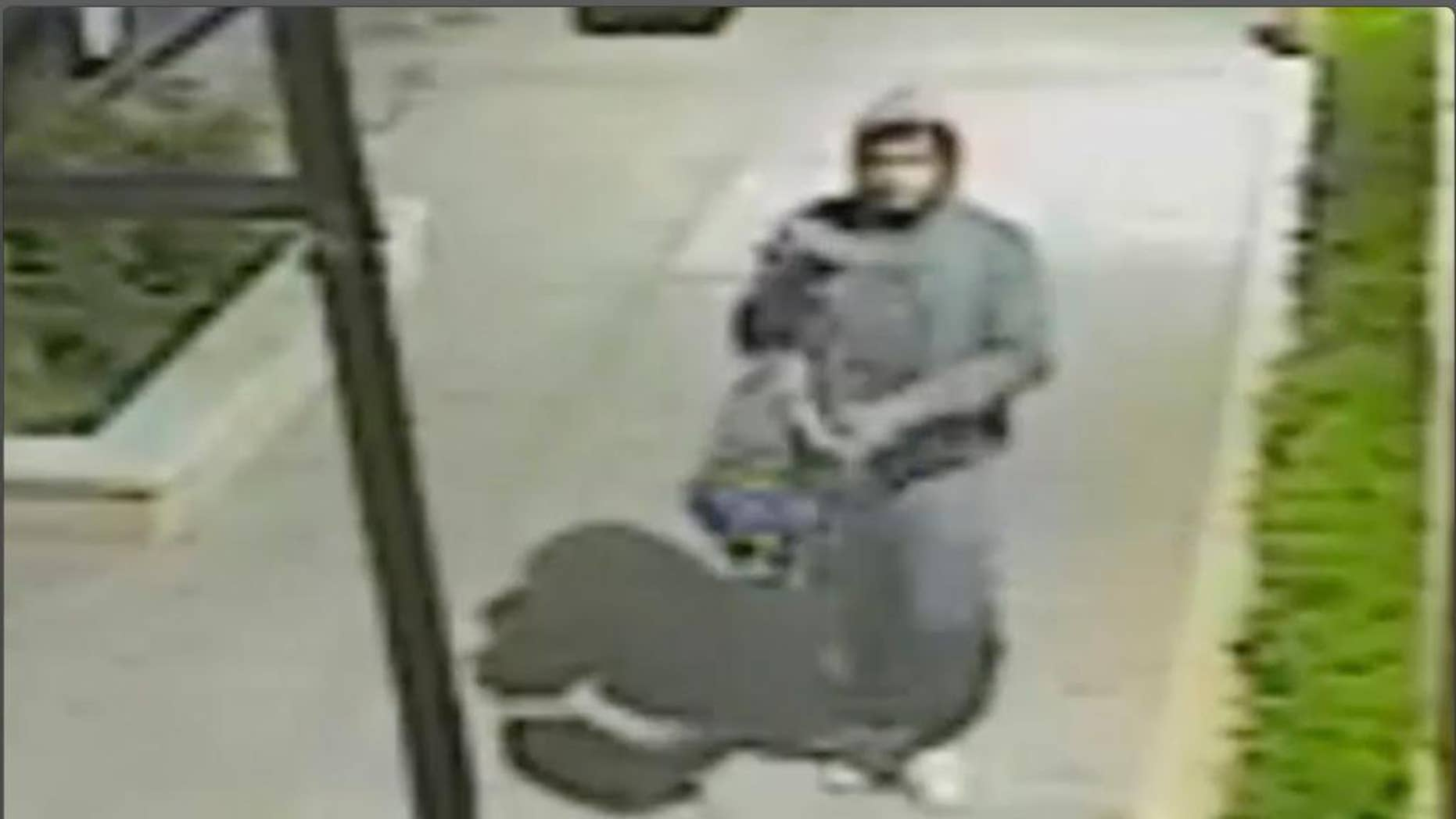 This image made from undated surveillance video provided by the New York City Police Department on Friday, May 5, 2017 shows a man who beat and sexually assaulted a German tourist in an attack caught on video around 3 a.m. Thursday. The woman was walking along West 146th Street in Harlem to rental accommodations. The video captured the man yanking away the woman's bag, punching her in the head and repeatedly hitting her as she lies on the ground. (New York City Police Department via AP)