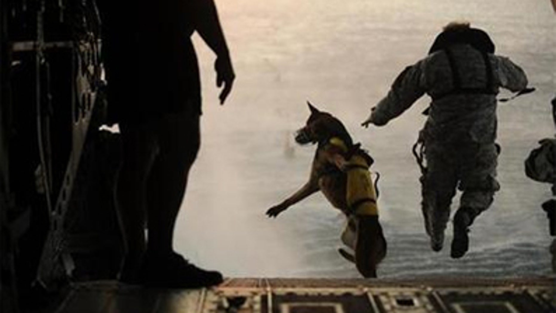 A U.S. Army soldier with the 10th Special Forces Group and his military working dog jump off the ramp of a CH-47 Chinook helicopter from the 160th Special Operations Aviation Regiment during water training over the Gulf of Mexico as part of exercise Emerald Warrior 2011 in this U.S. military handout image from March 1, 2011.