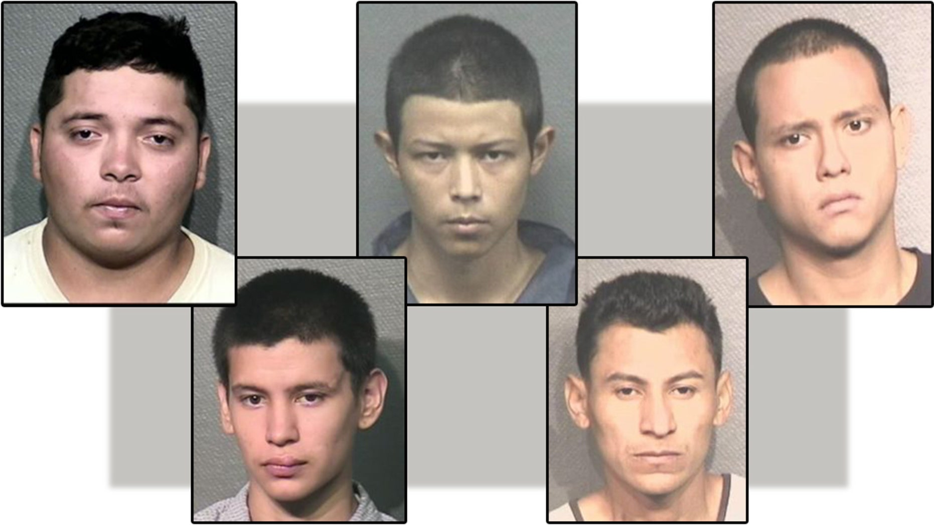 Francisco Antonio Rodriguez-Ulloa, left, is a member of the deadly MS-13 gang was charged with murder on Tuesday, according to police. Four other MS-13 gang members, pictured above, were also charged with murder. From left to right: Carlos Elias Henriquez-Torres, Marlon A. Miranda, Miguel Aguilar-Ochoa, Wilson J. Ventura-Mejia.