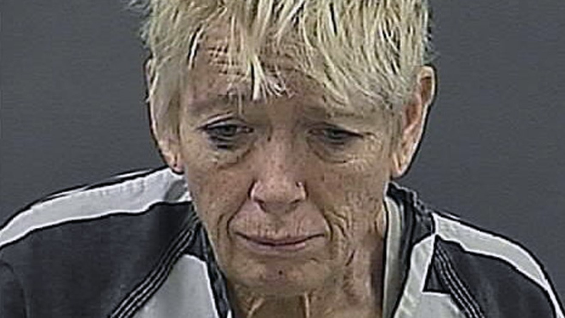 Cynthia Anderson sentenced to probation in drowning a 2-week-old puppy in a Nebraska airport bathroom.