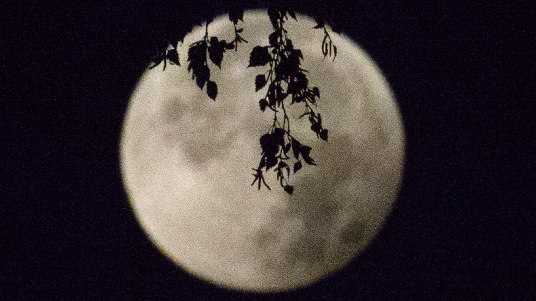 "File photo: A supermoon appears after a total ""supermoon"" lunar eclipse in Brussels September 28, 2015."