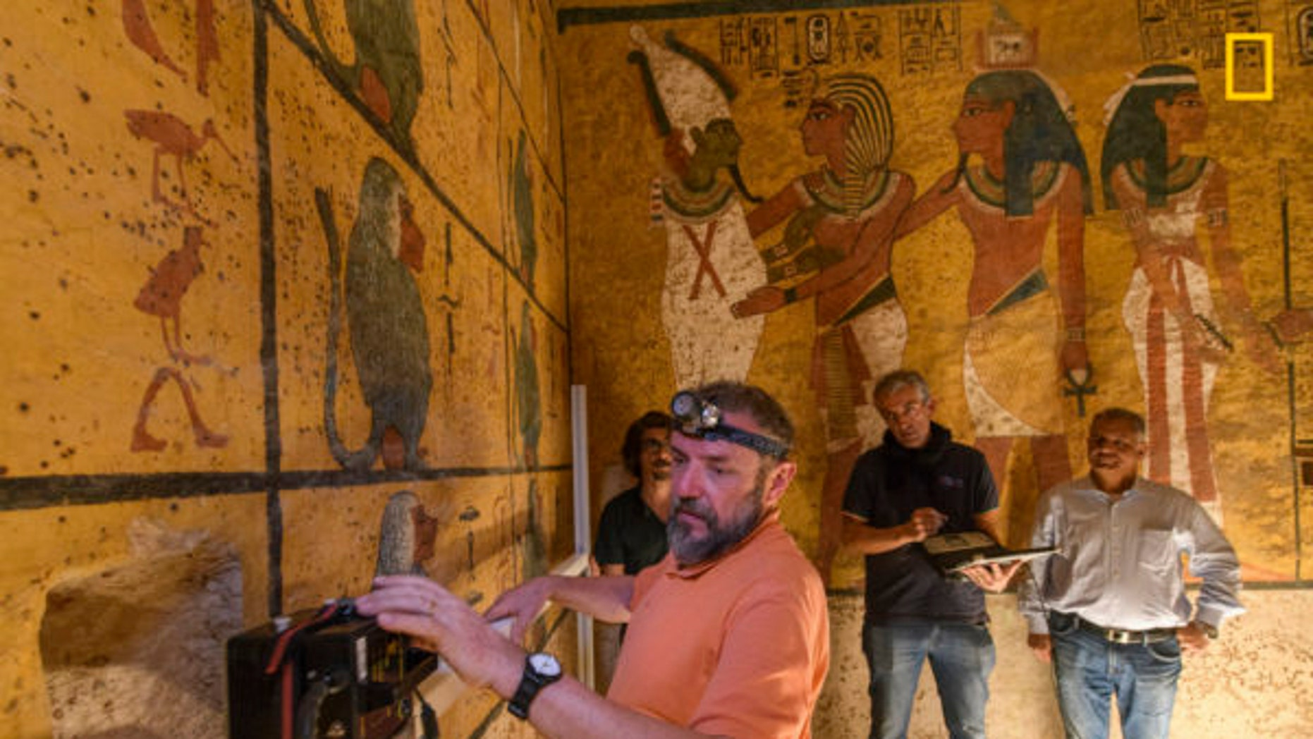 Exclusive Photos: Search Resumes for Hidden Chambers In King Tut's Tomb. A technician uses ground-penetrating radar (GPR) to search for voids behind the west wall of King Tutankhamun's tomb. The new investigation is directed by specialists from the Polytechnic University of Turin in Italy.  (Kenneth Garrett)