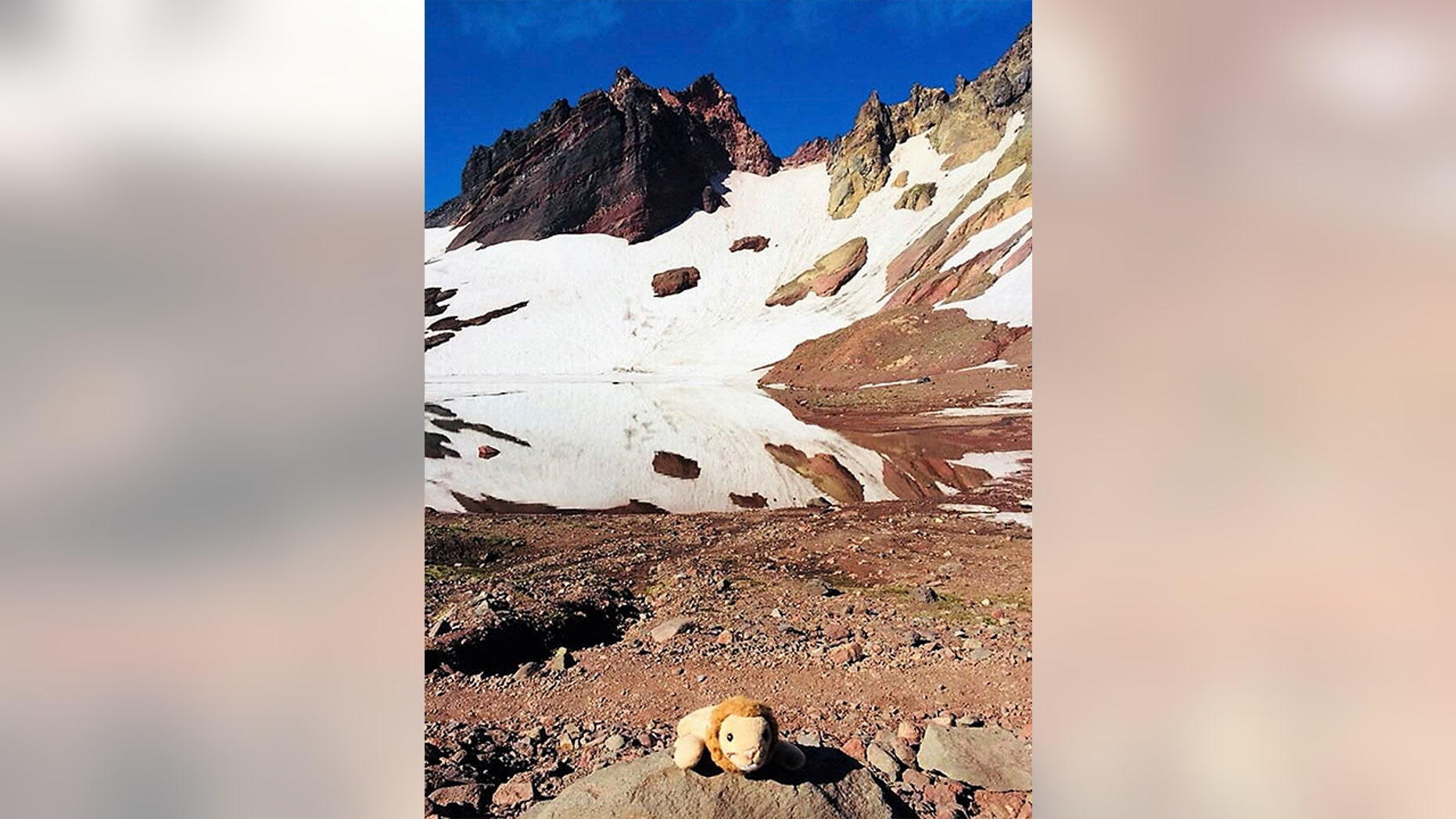 This photo provided by Holly Spaman shows a small stuffed lion she found along the Broken Top Trail near Bend, Ore., July 16, 2018. A little girl who lost the lion on a hike in the Oregon backcountry was reunited with her favorite toy over the weekend after a community effort to identify her.