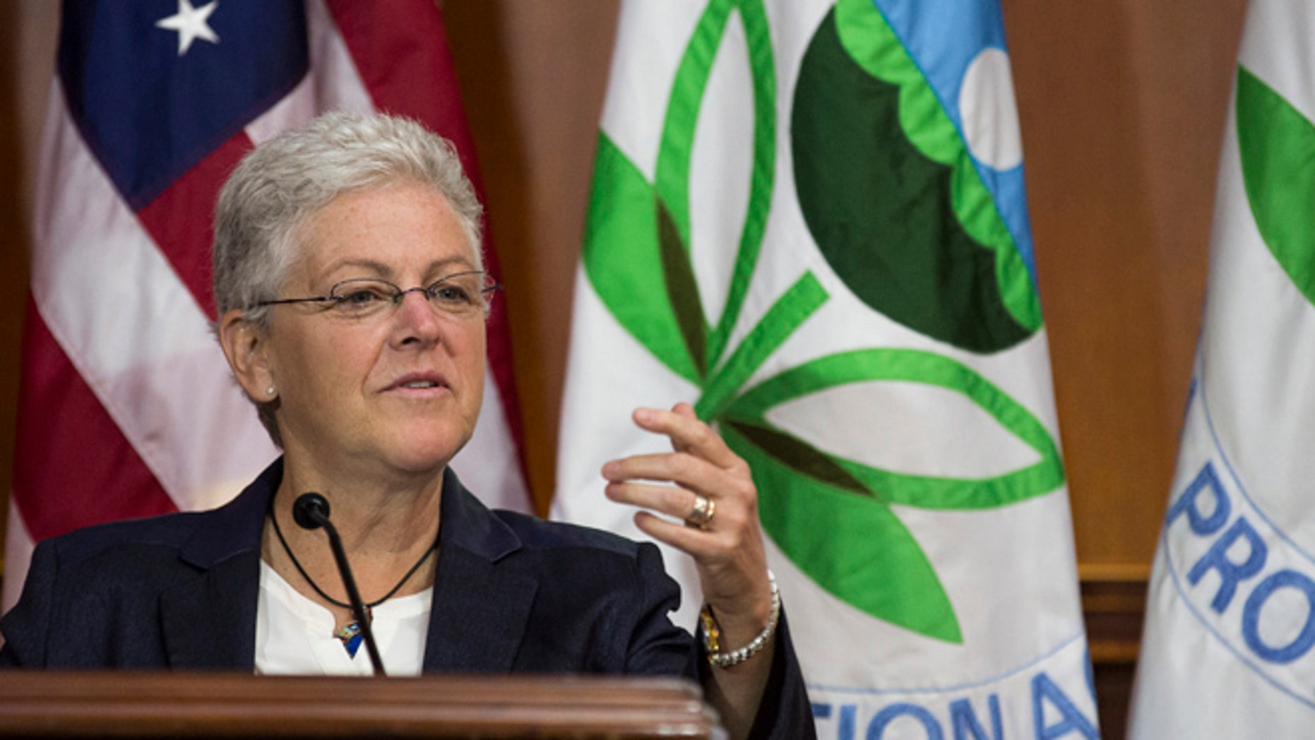 FILE: June 2, 2014: EPA Administrator Gina McCarthy at a news conference in Washington, D.C.