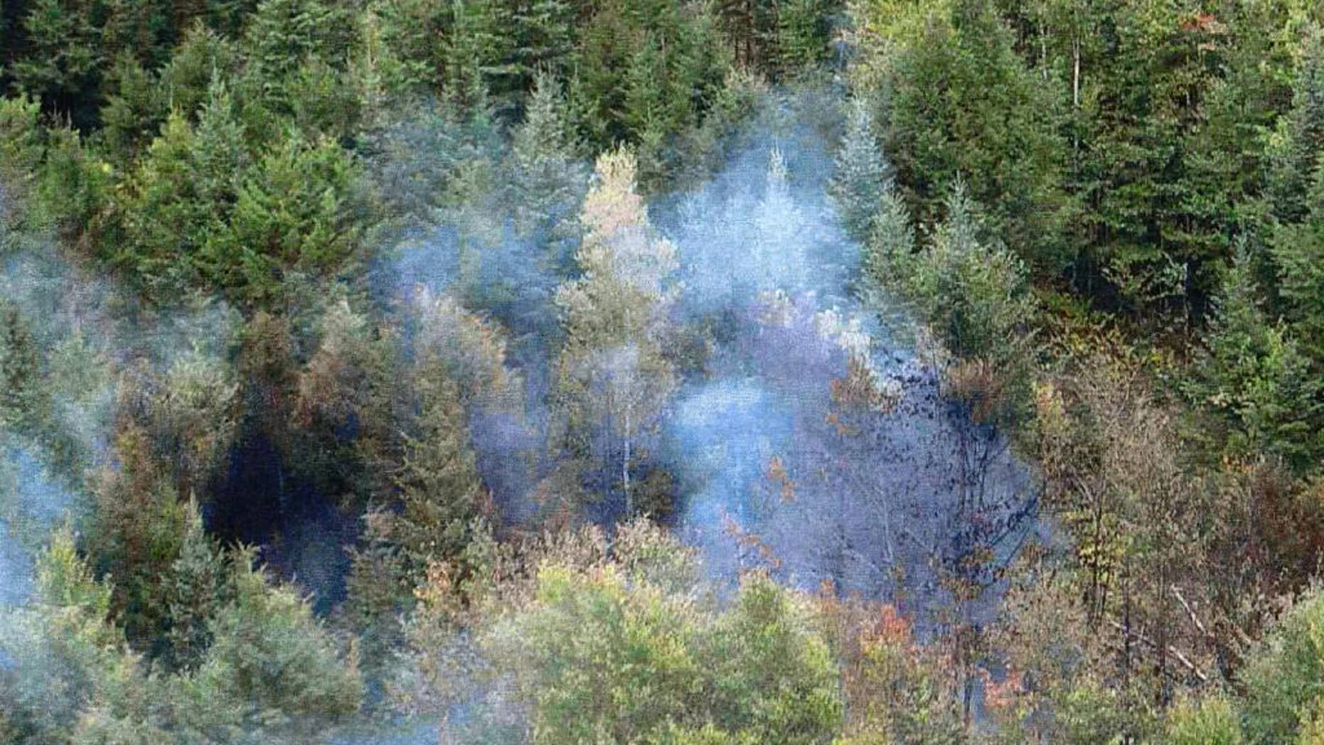 In this Sept. 23, 2009 photo released by the U.S. Attorney's Office, a fire set by fleeing workers burns in a forest where authorities seized $9 million worth of marijuana in Township 37, Maine. Three men convicted in the enterprise that produced one of the biggest marijuana seizures in state history were sentenced ranging from 5-14 years Thursday, April 21, 2016, in U.S. District Court in Bangor, Maine. (U.S. Attorney's Office via AP)
