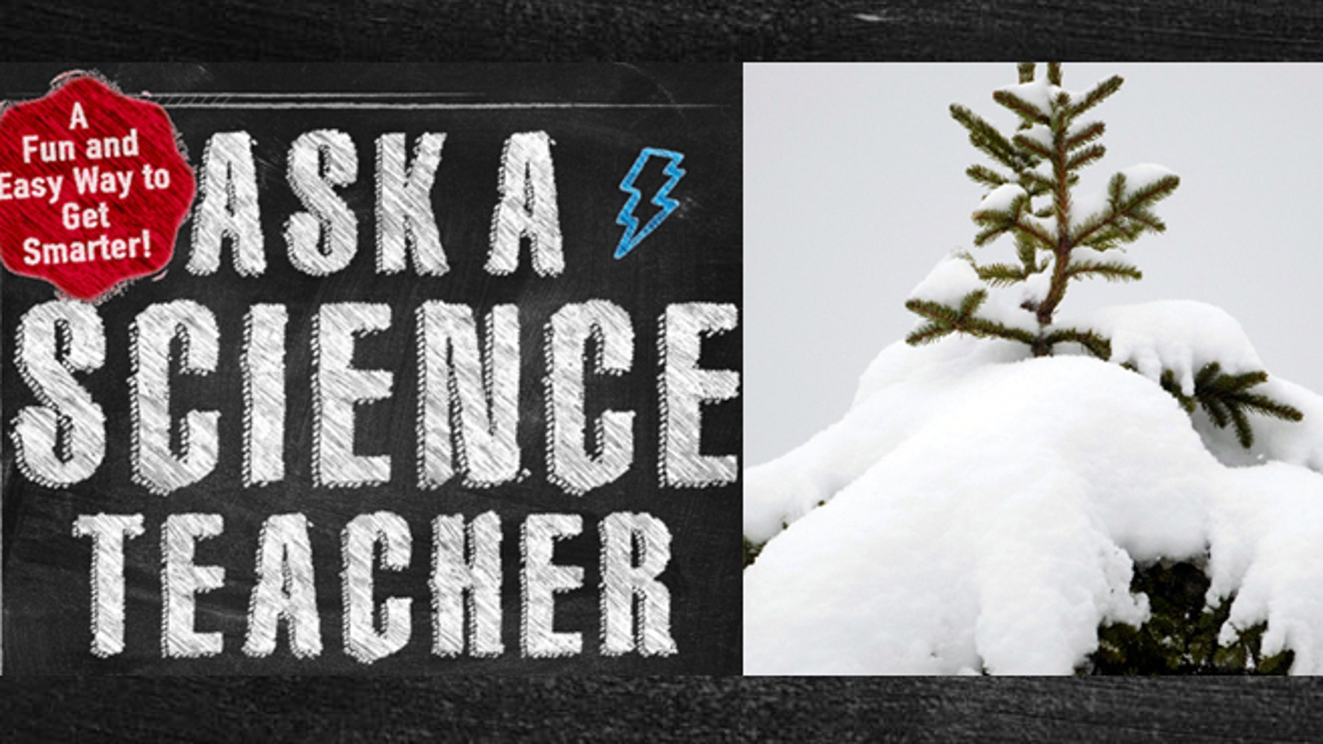 Ask a science teacher: Why is snow white, and where does its color ...