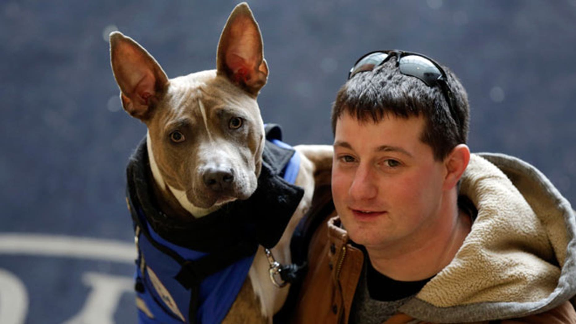Former U.S. Marine Joe Bonfiglio, 24, and his pit bull assistance dog Zen, pose for a photograph on the campus of Mercy College, in Dobbs Ferry, NY, Wednesday, Feb. 4, 2015.
