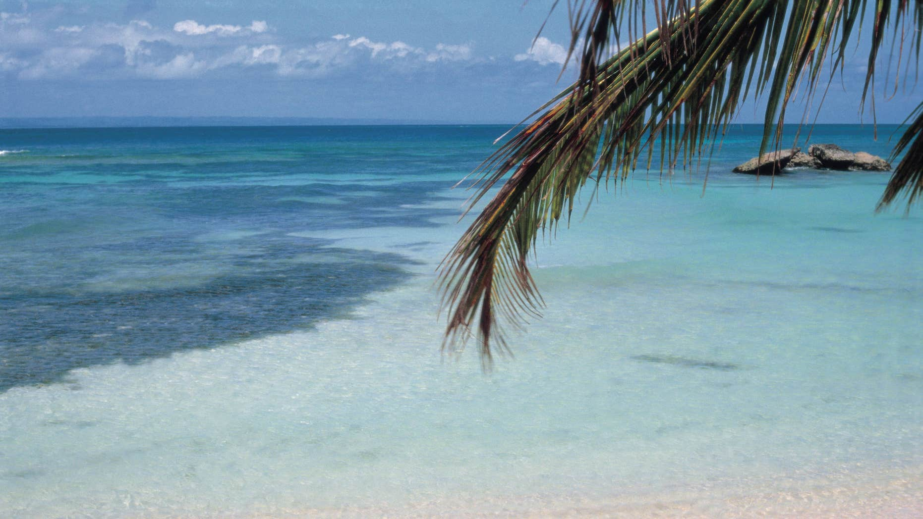 Tropical beach View of the crystalline sea from a tropical beach  (Photo by Angel Bocalandro/Cover/Getty Images)