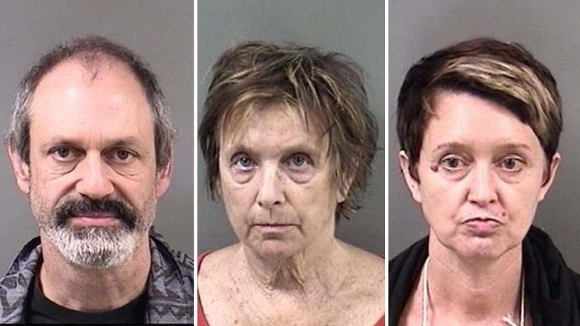 Berkeley Police announced the arrests on Sunday of three protesters on weapon possession charges: (left to right) Jason Wallach, 41, Kate Brenner, 69, and Kristen Edith Koster, 50.