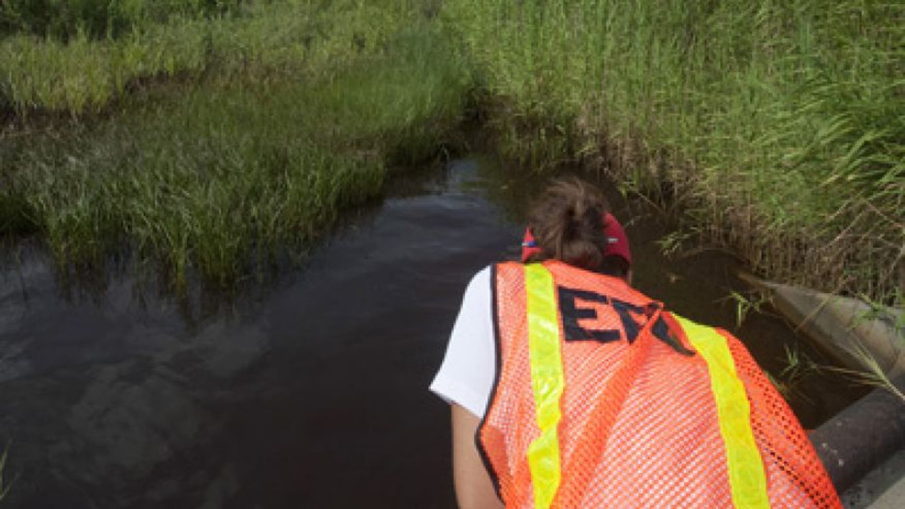July 7, 2010: An Environmental Protection Agency worker looks at oil from the Deepwater Horizon spill which seeped into a marsh in Waveland, Mississippi.