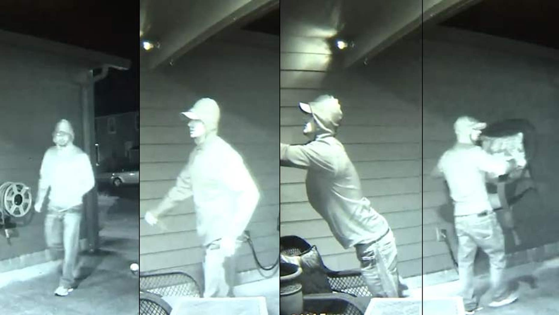 Surveillance images of Salem burglary suspect.