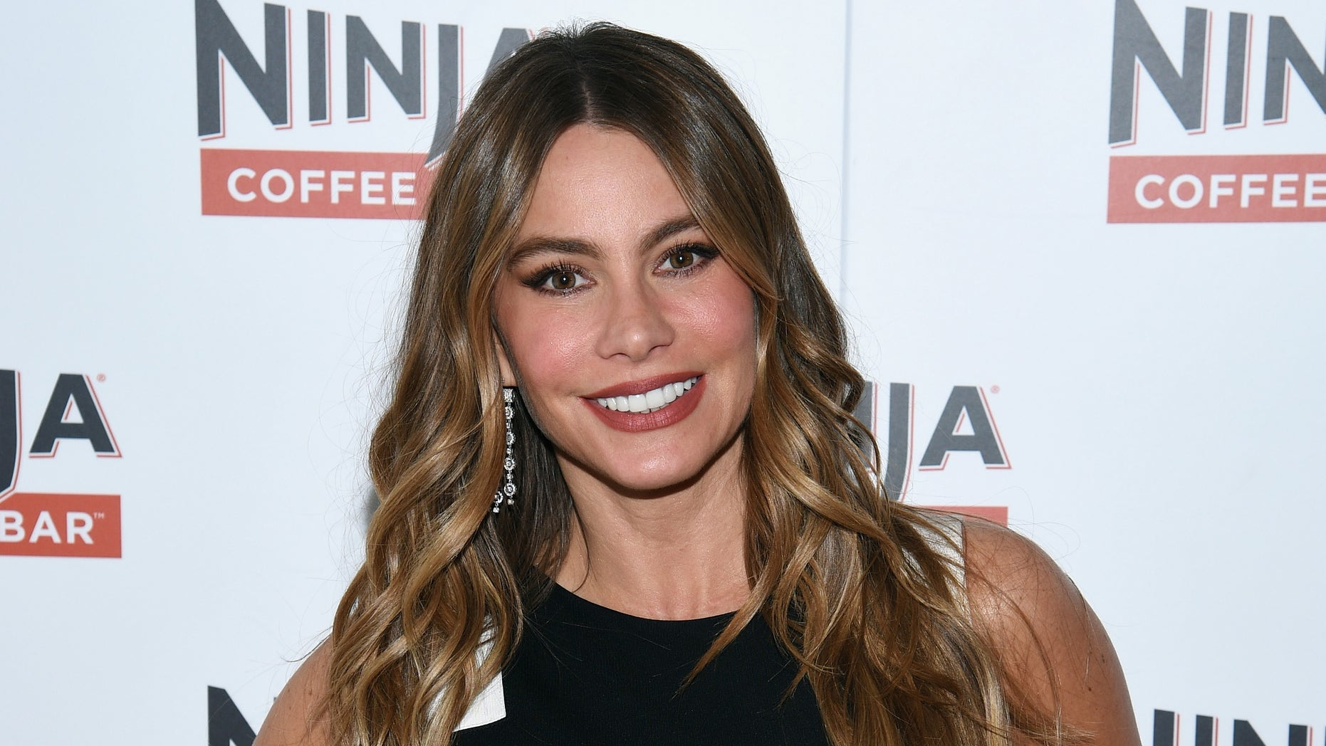 Sofia Vergara in a September 23, 2015 file photo.