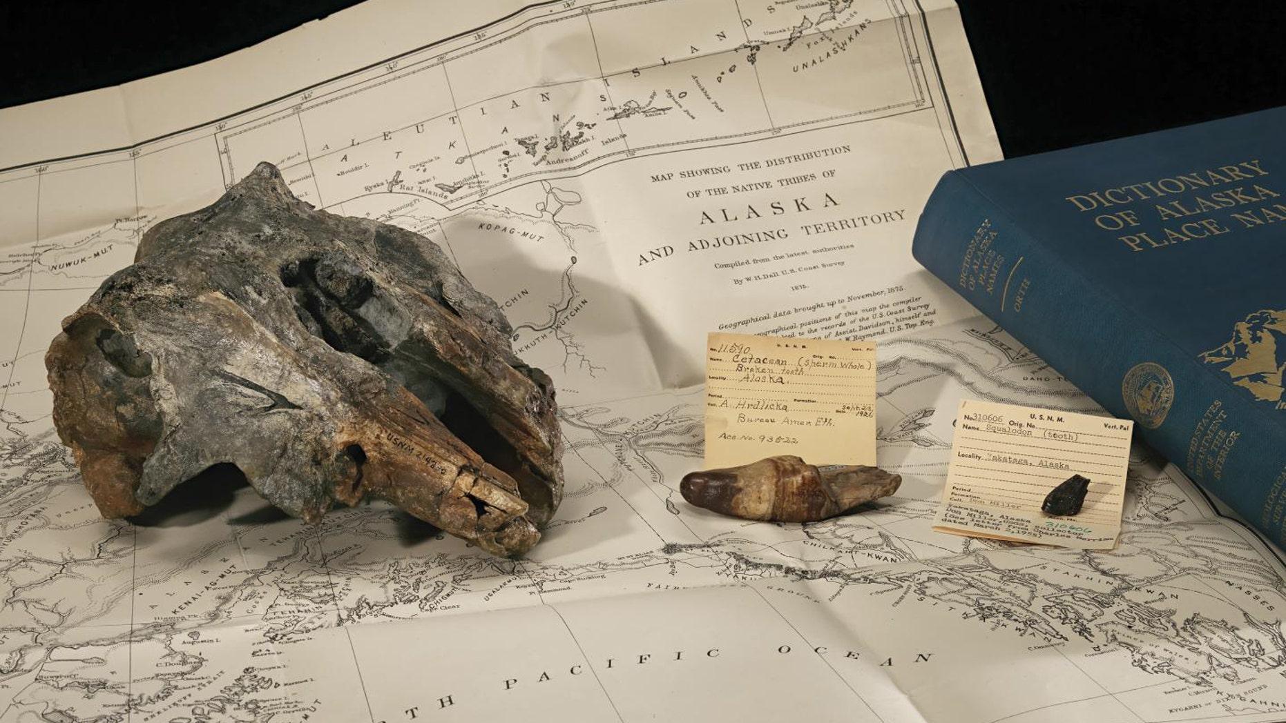 (James Di Loreto, Smithsonian)