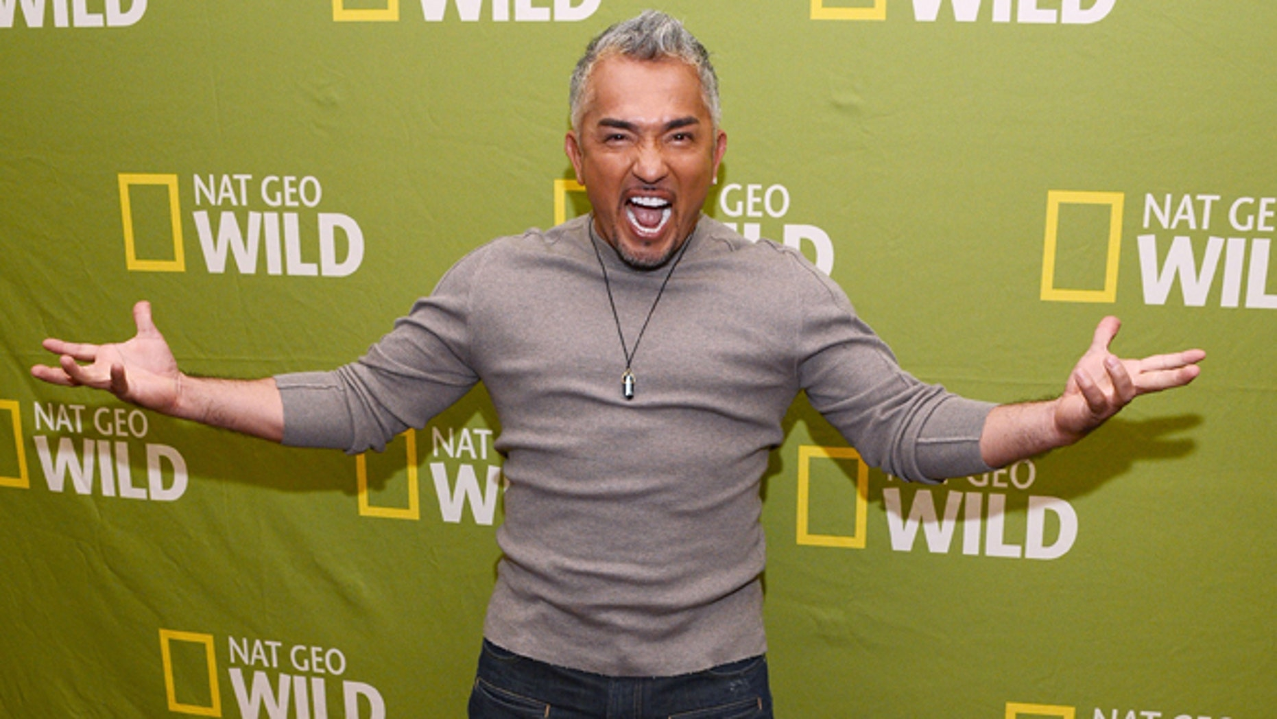 Cesar Millan in a January 2013 file photo.