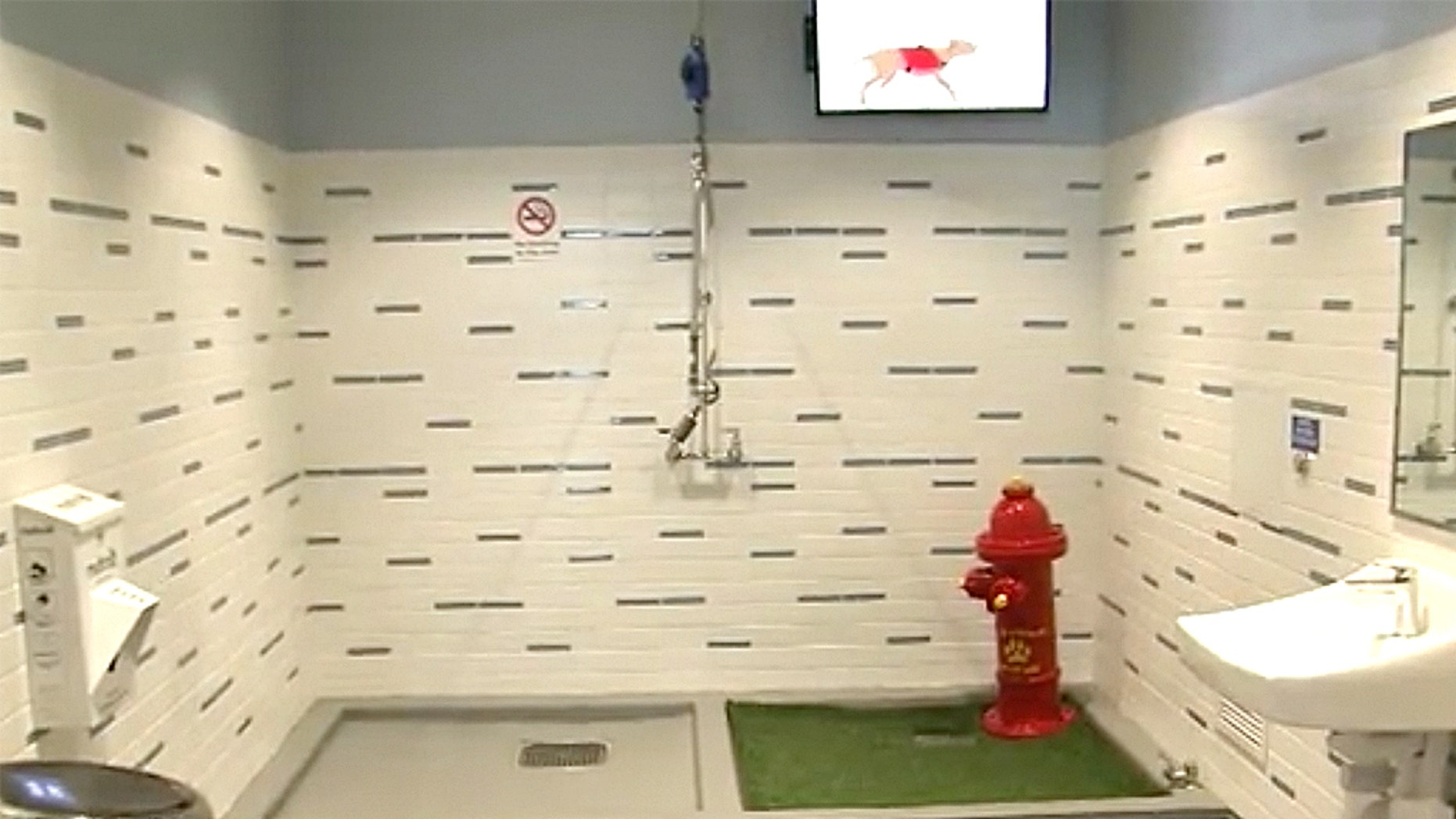 The Atlanta airport revealed it cost $3.9 million to install seven dog bathrooms inside the terminal.