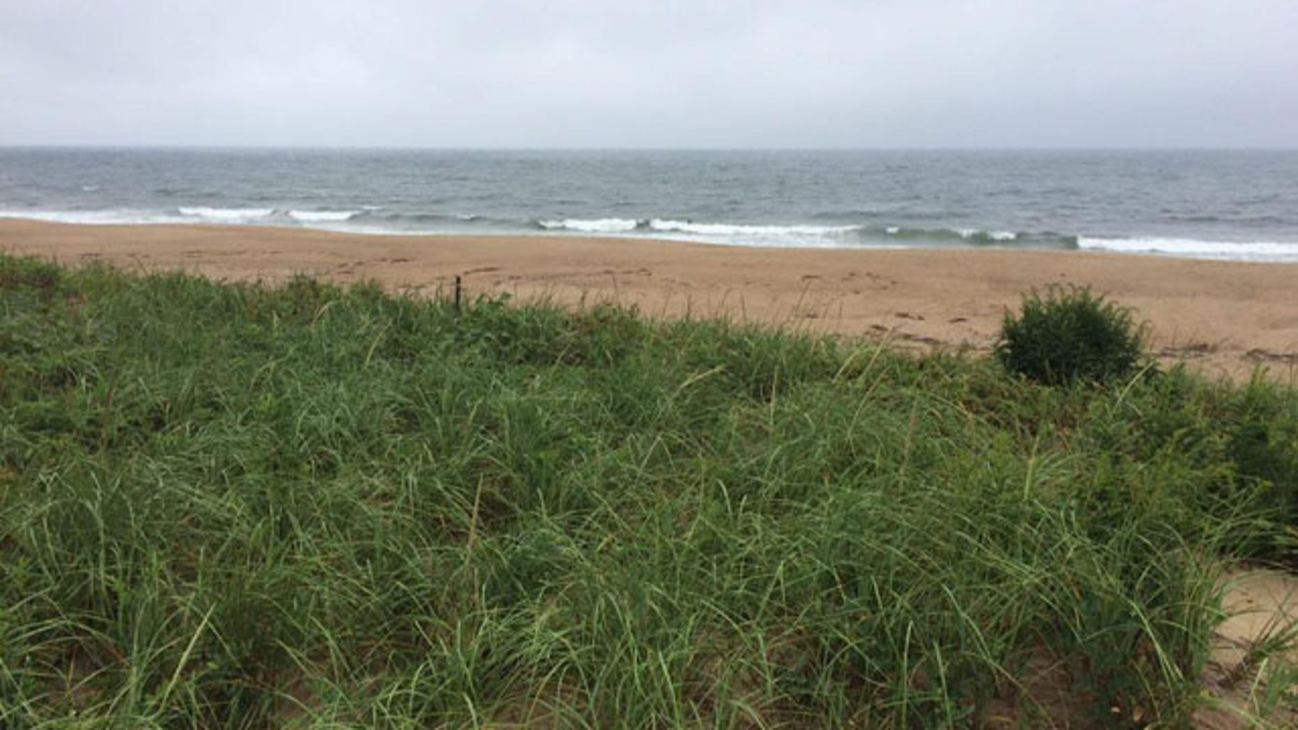 This undated photo shows the beach at Plum Island, Mass., near where a woman's body was discovered Sunday, Aug. 23, 2015: